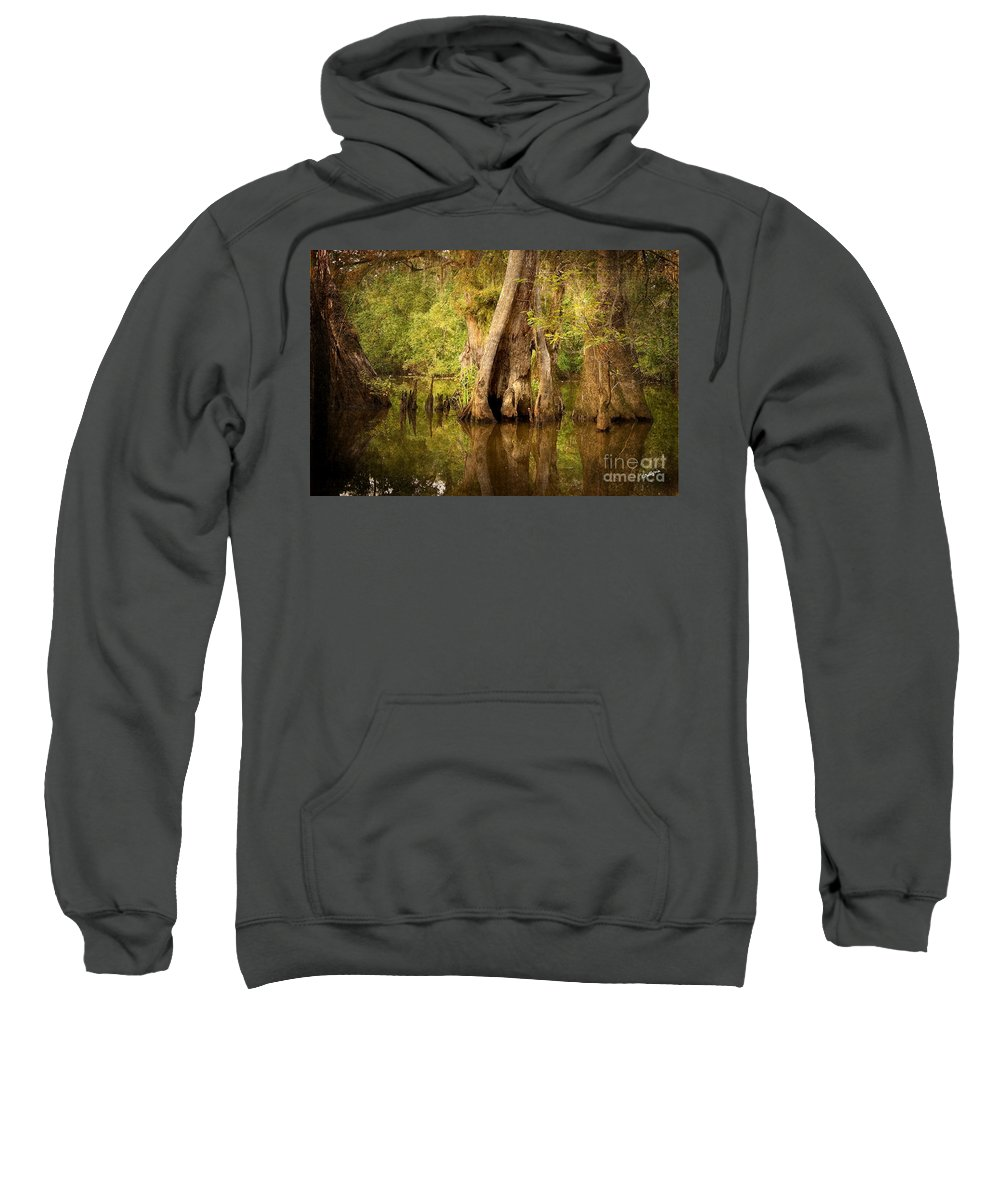 Water Sweatshirt featuring the photograph Cypress by Scott Pellegrin