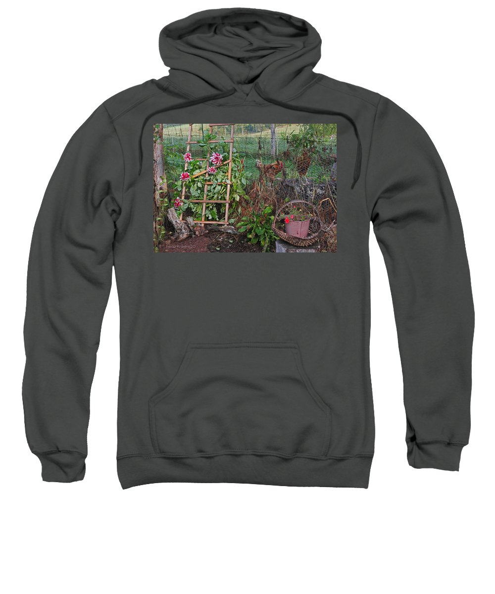 Flowers Sweatshirt featuring the photograph Dahlias And Chickens by Denise Romano
