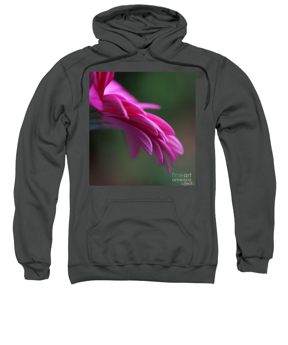 Pink Sweatshirt featuring the photograph Daisy Petals by Carol Lynch