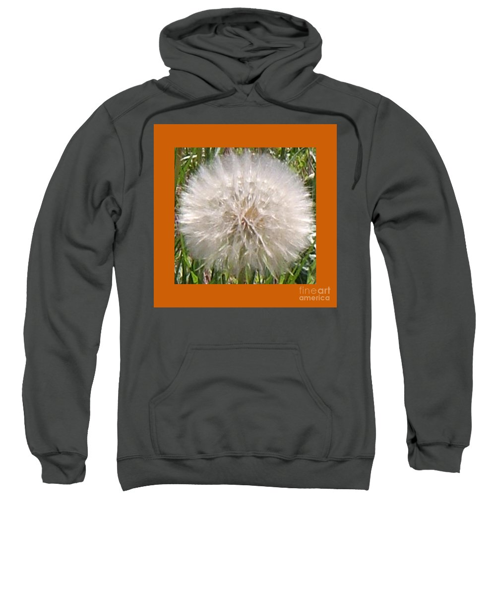 Grass Photographs Sweatshirt featuring the photograph Dandelions 2 by Barb Dalton
