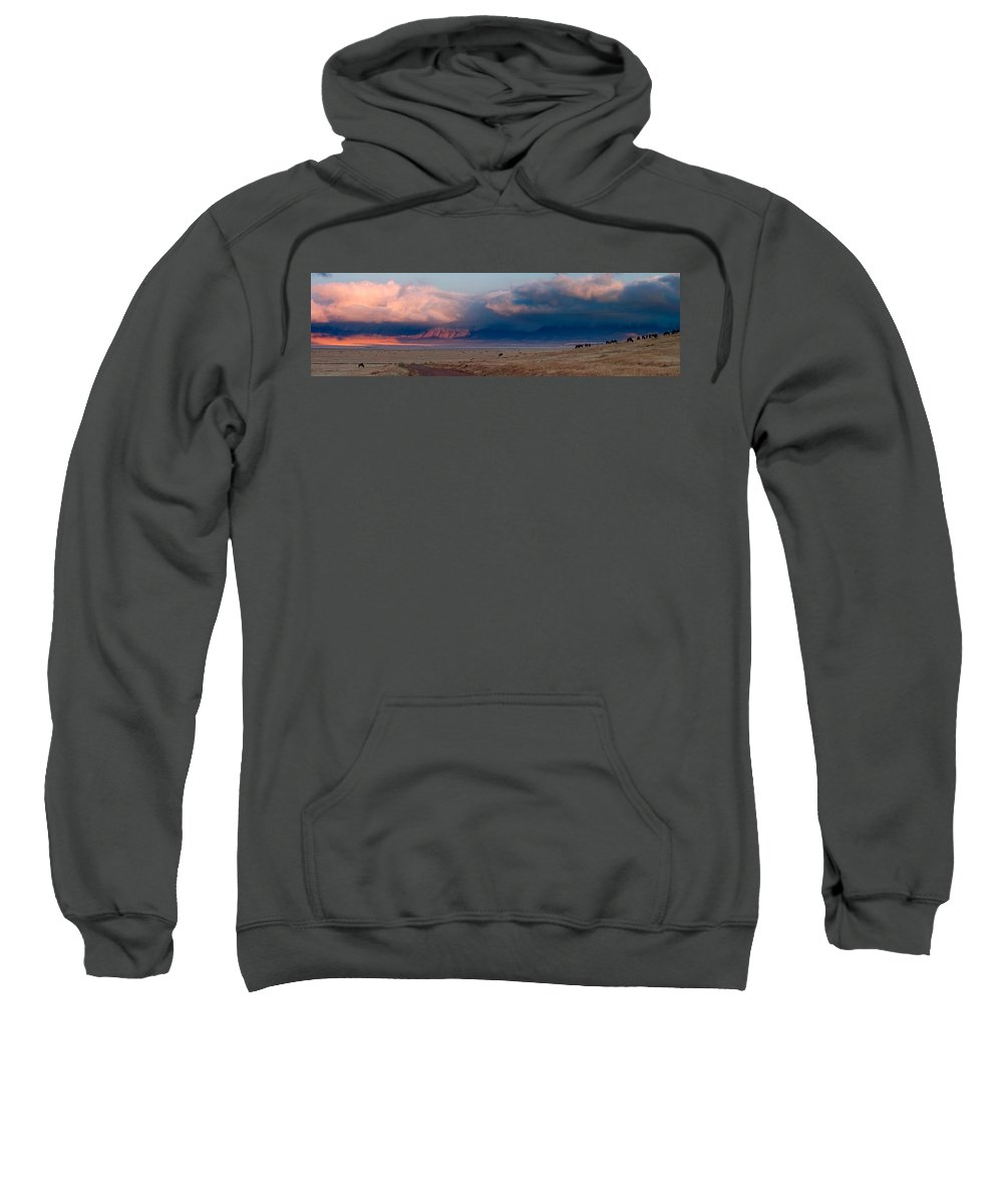 3scape Sweatshirt featuring the photograph Dawn In Ngorongoro Crater by Adam Romanowicz