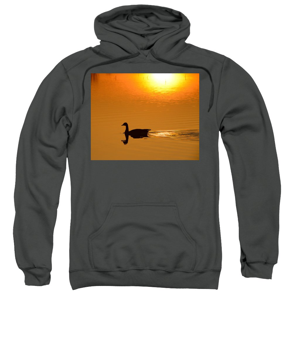 Goose Sweatshirt featuring the photograph Day Is Ending by Jayne Gohr