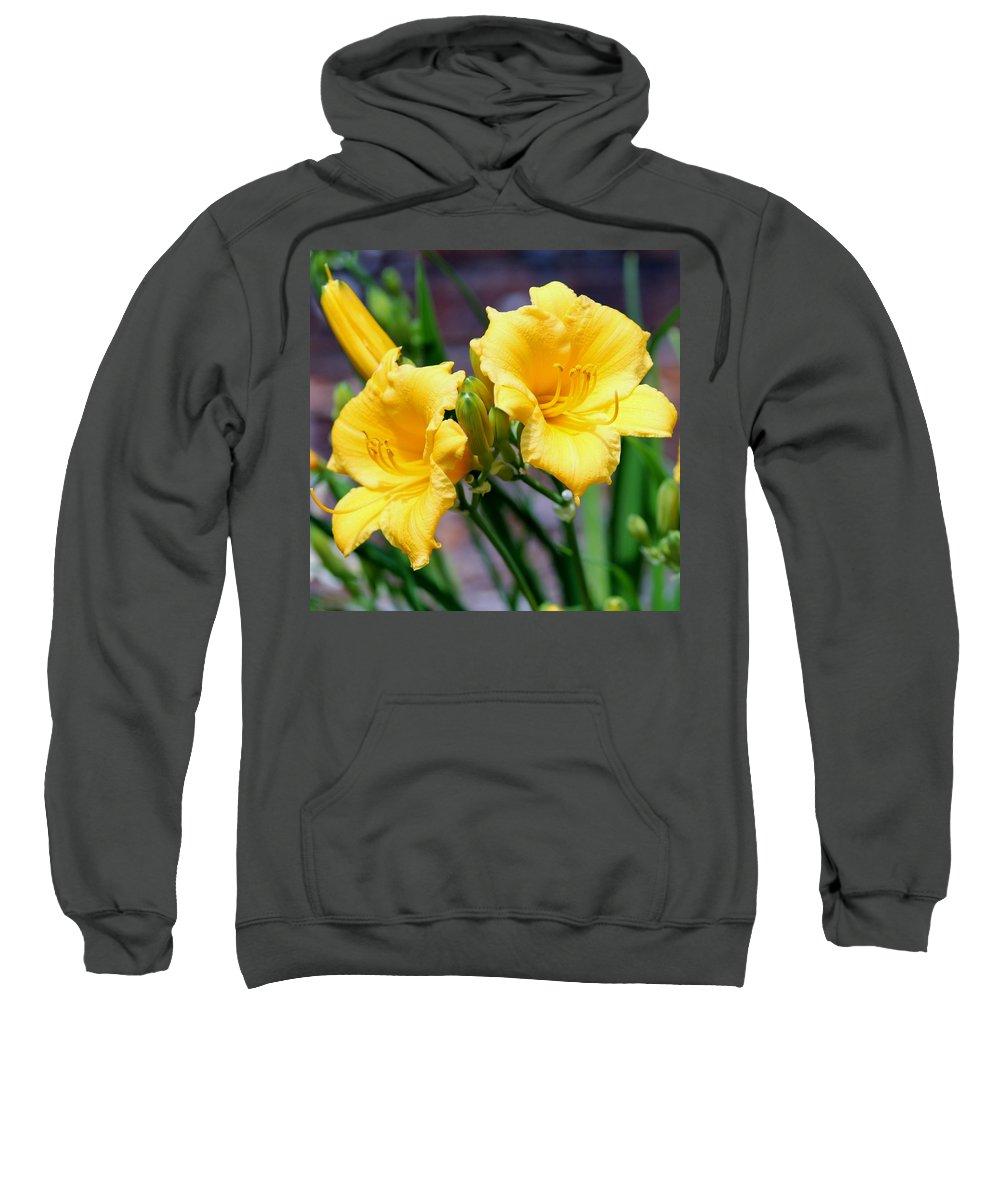 Daylily Sweatshirt featuring the photograph Daylily by Cynthia Guinn