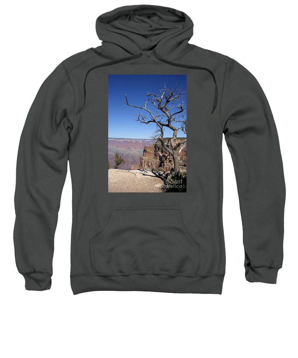 Grand Canyon Sweatshirt featuring the photograph Dead Tree At The View Point by Christiane Schulze Art And Photography