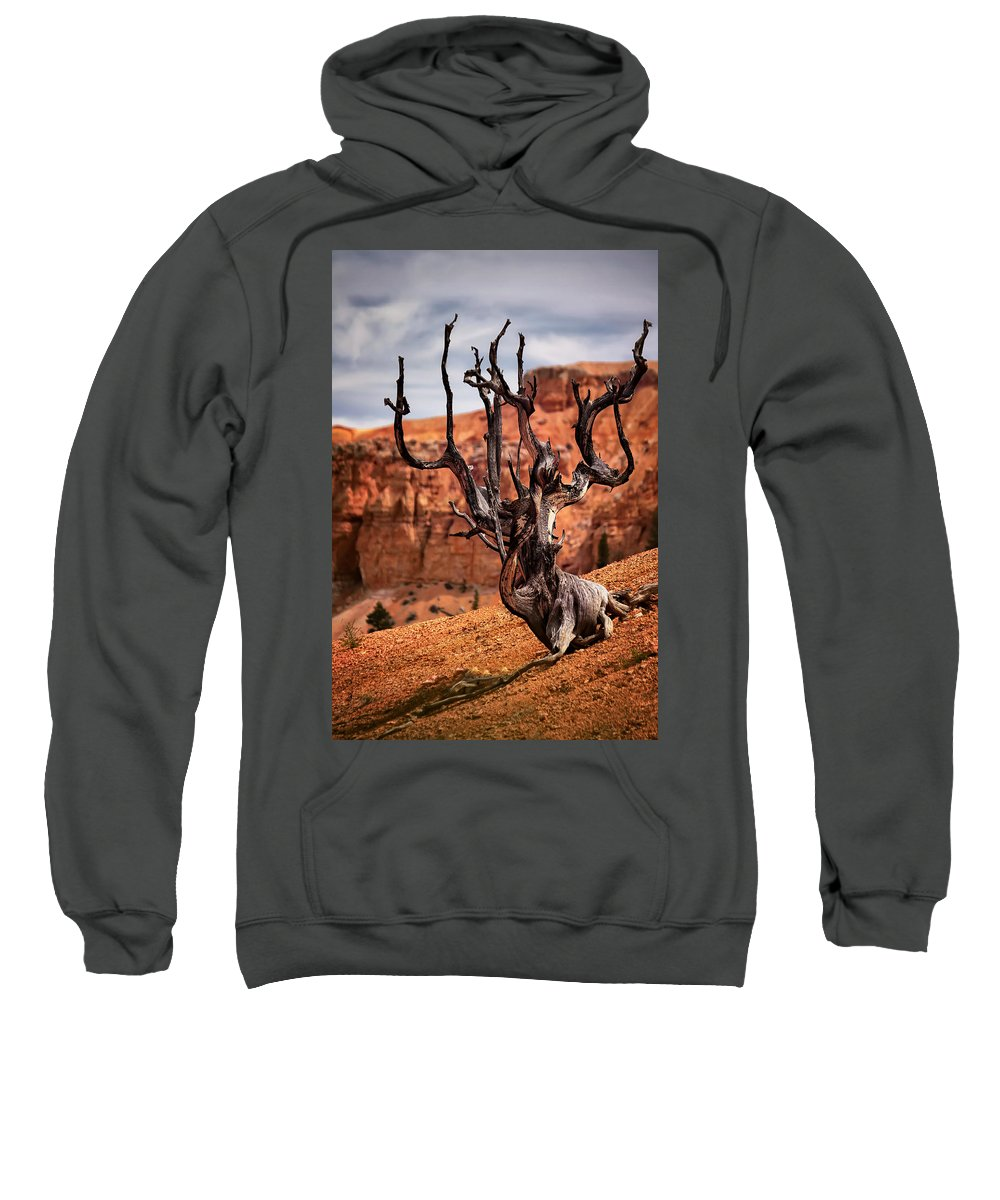 Bryce Sweatshirt featuring the photograph Dead Tree by Eduard Moldoveanu