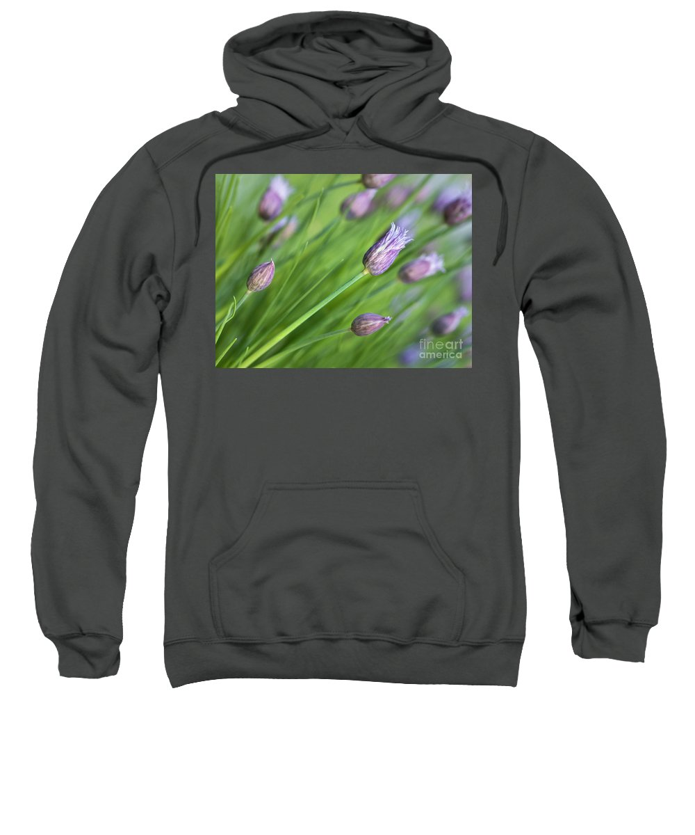 Chives Sweatshirt featuring the photograph Debut by Claudia Kuhn