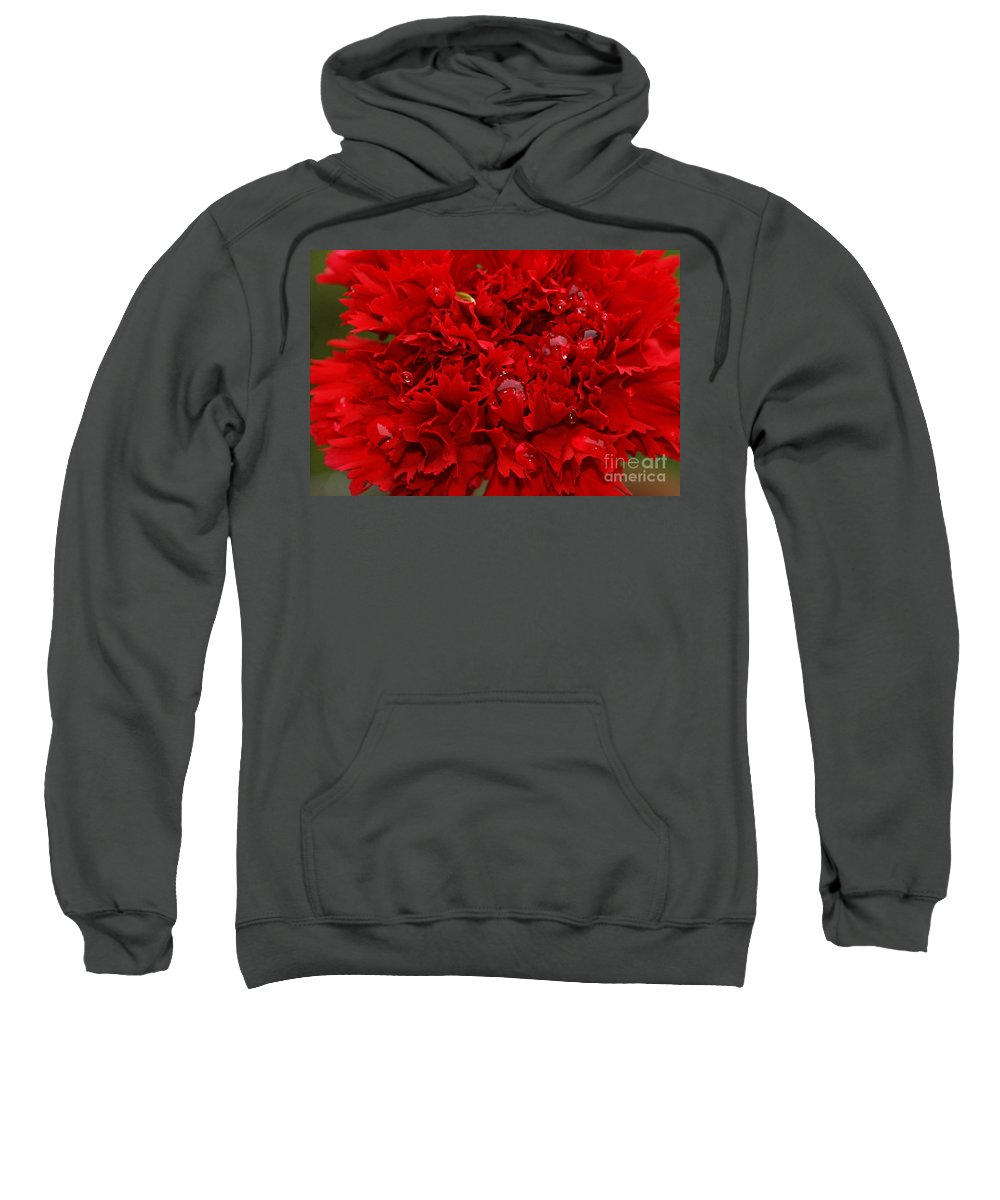 Red Sweatshirt featuring the photograph Deep Red Carnation by Carol Lynch