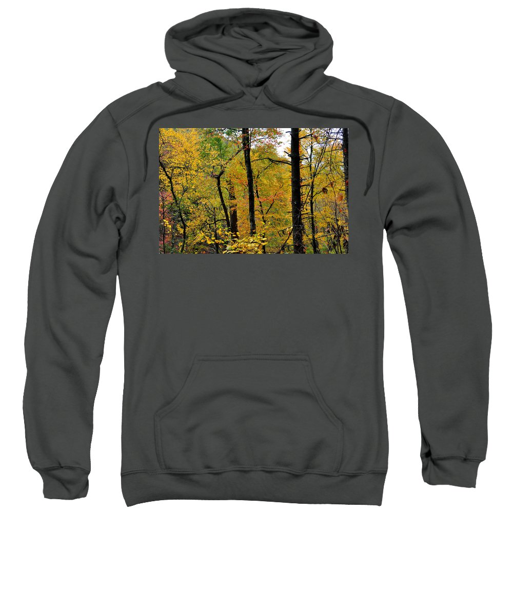 Woods Sweatshirt featuring the photograph Deep Woods by Todd Hostetter