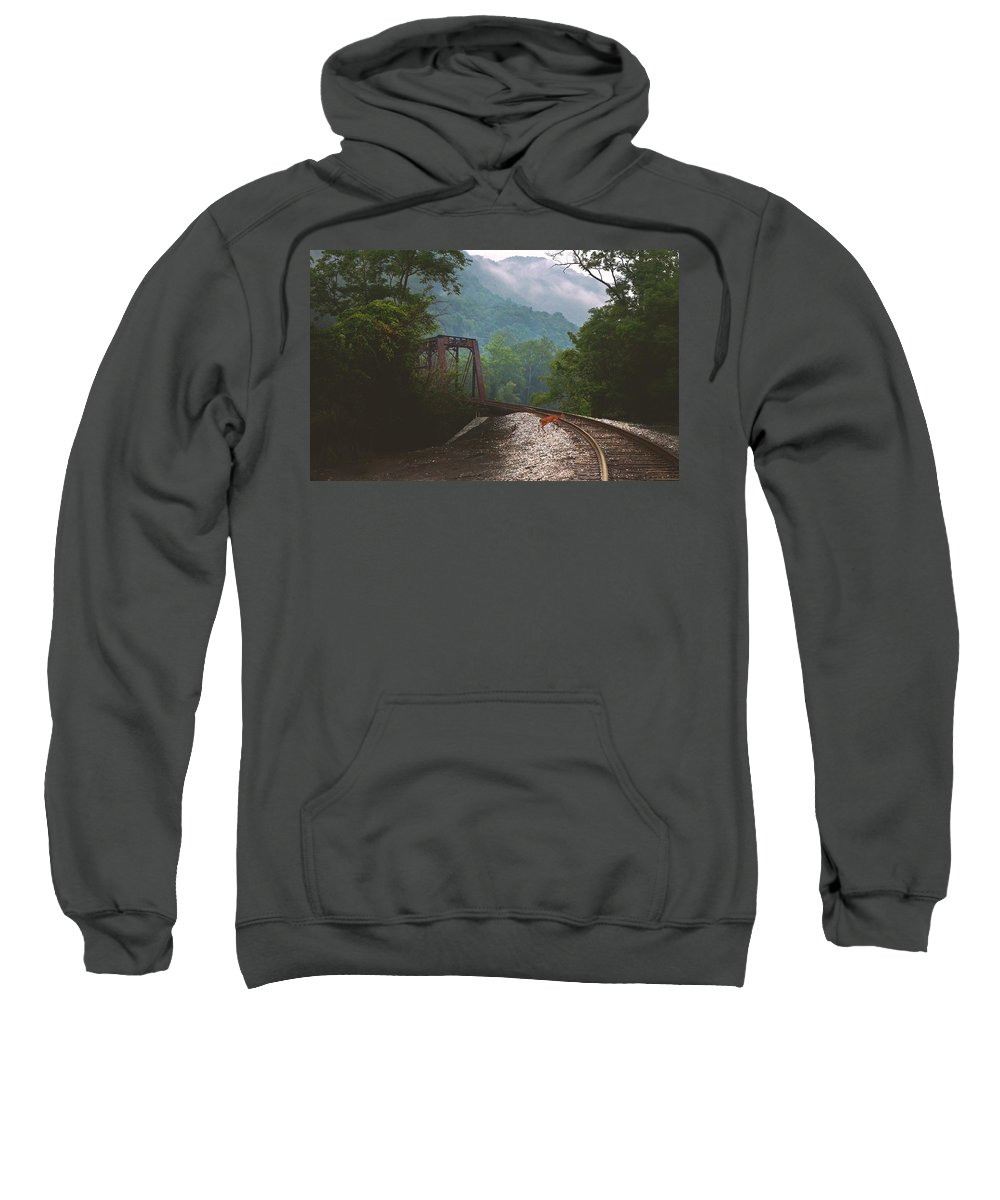 Animals Sweatshirt featuring the photograph Deer Crossing by Lj Lambert