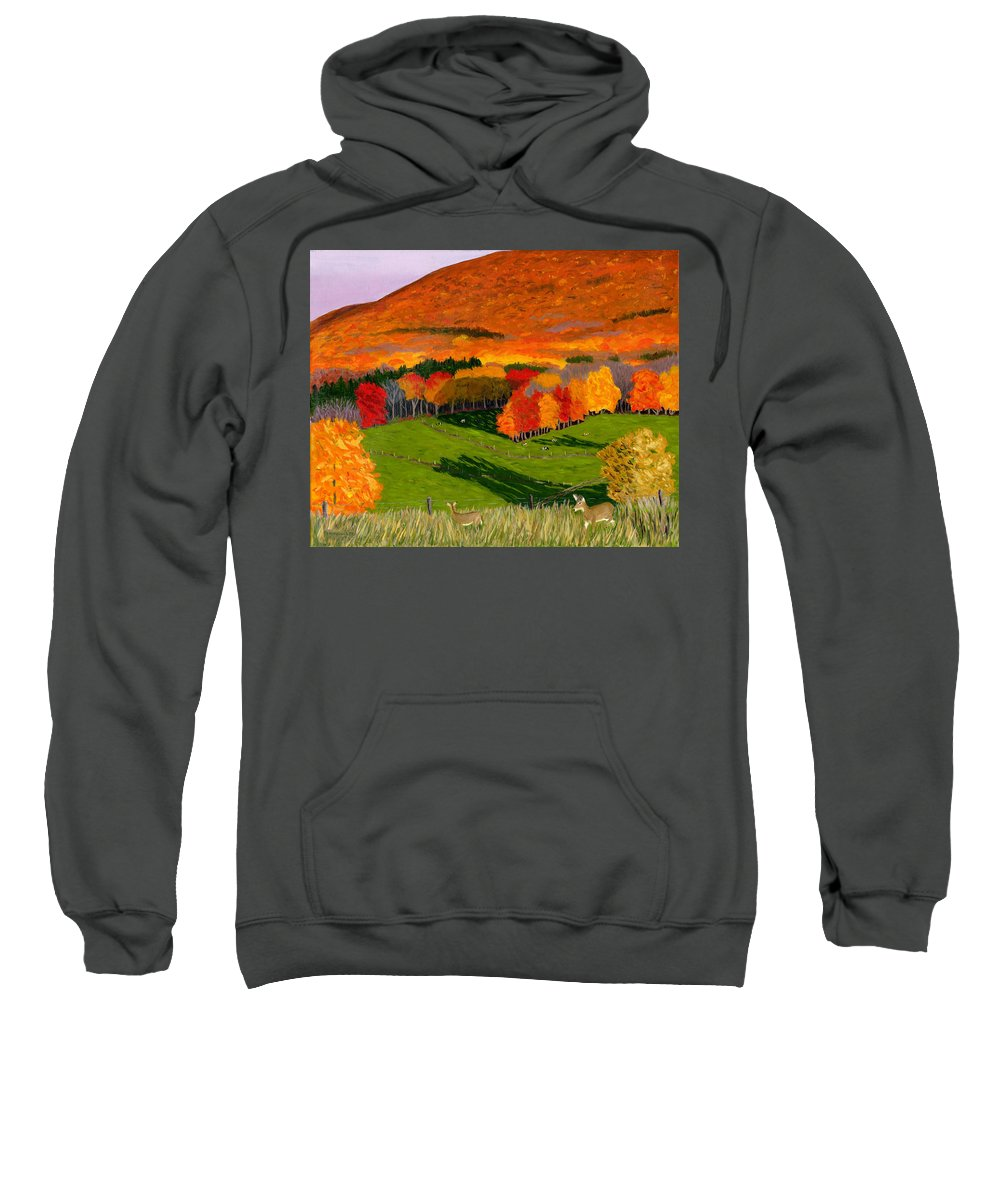 White Tail Deer Sweatshirt featuring the painting Deer's Eye View Of Bear Meadows Farm by Barb Pennypacker