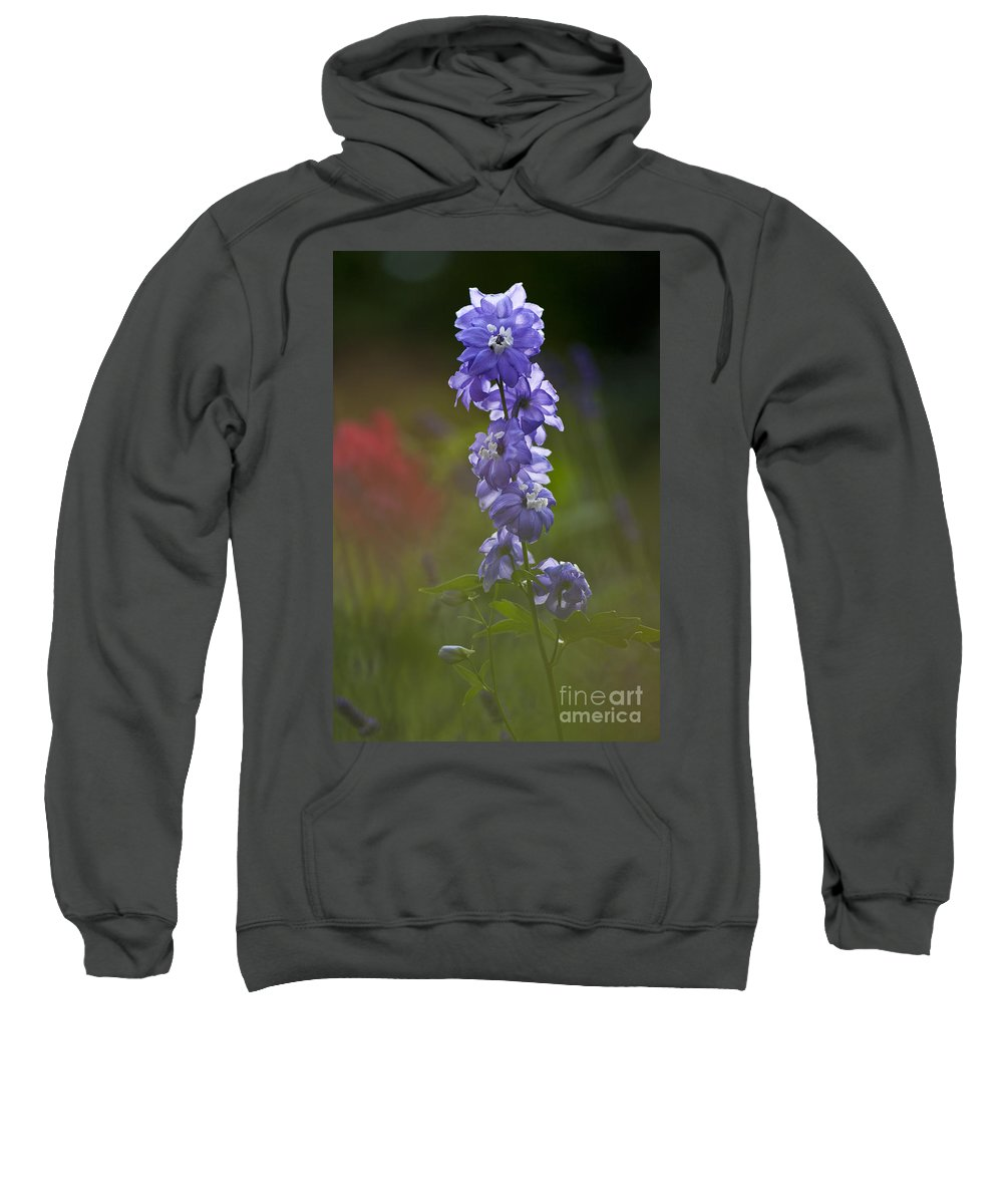 Heiko Sweatshirt featuring the photograph Delphinium Blossom by Heiko Koehrer-Wagner