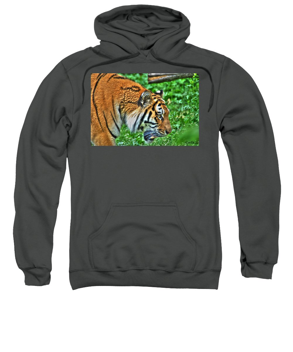 Animals Sweatshirt featuring the photograph Determination In The Tigers Stare by Michael Frank Jr