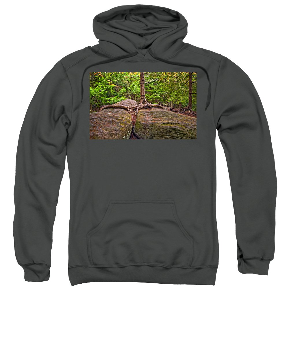West Virginia Sweatshirt featuring the photograph Determination by Steve Harrington