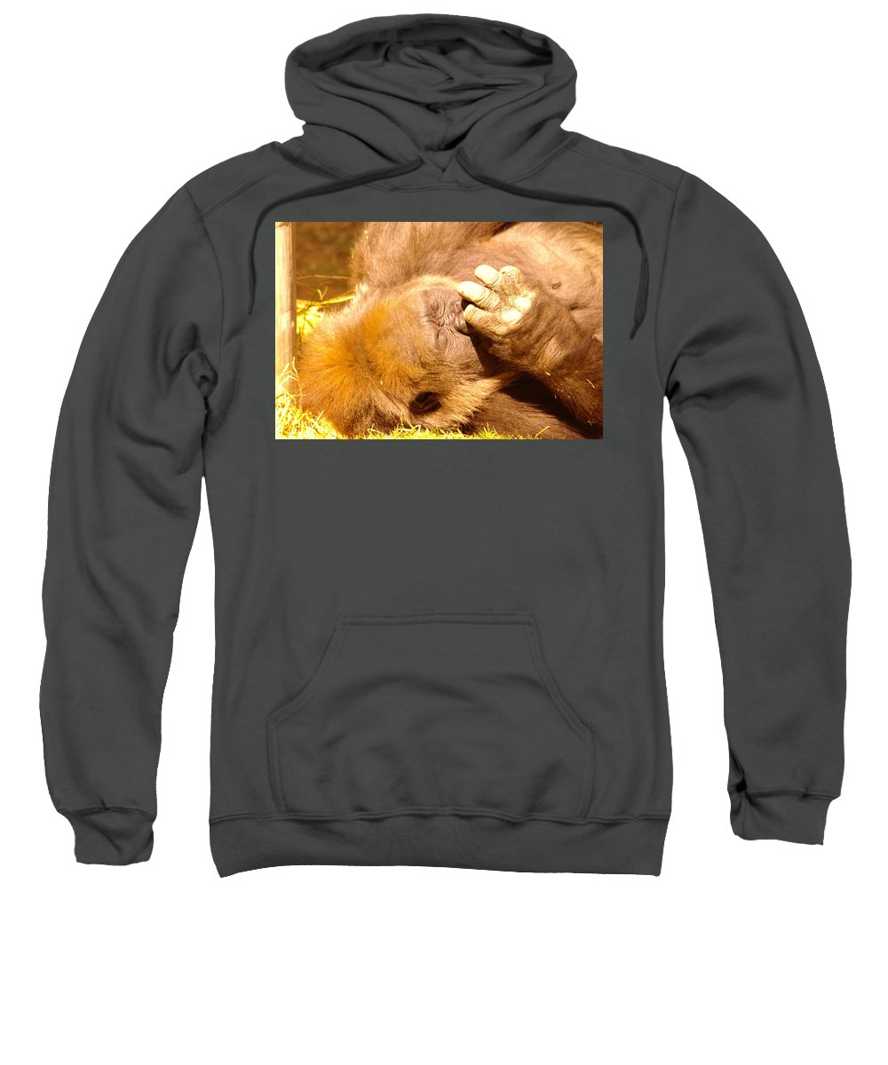 Gorillas Sweatshirt featuring the photograph Digging For Gold by Jeff Swan