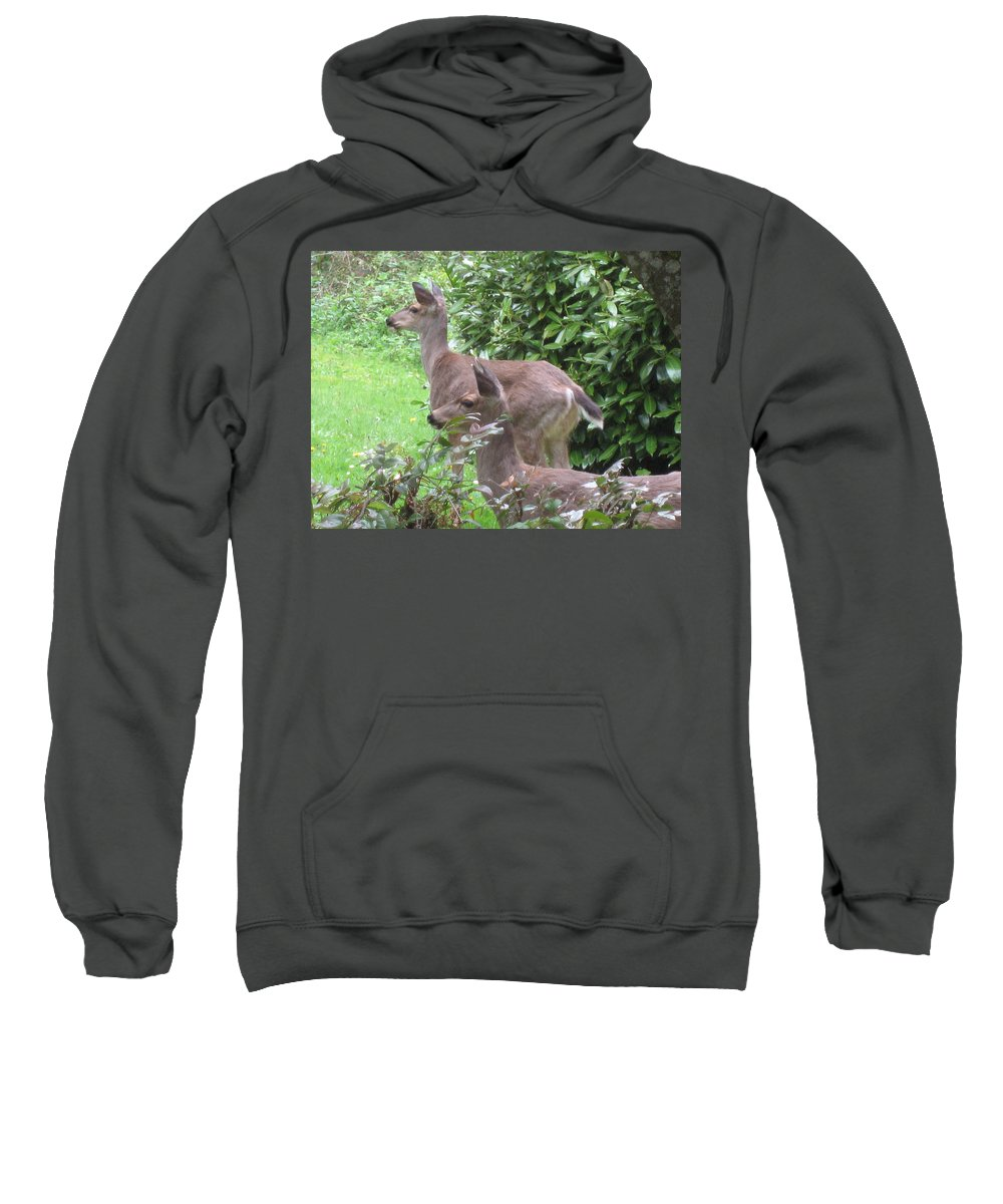 Animals Sweatshirt featuring the photograph Do You See What I See by Kym Backland