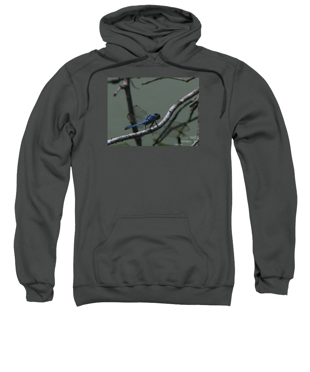 Art For The Wall...patzer Photography Sweatshirt featuring the photograph Dragonfly by Greg Patzer