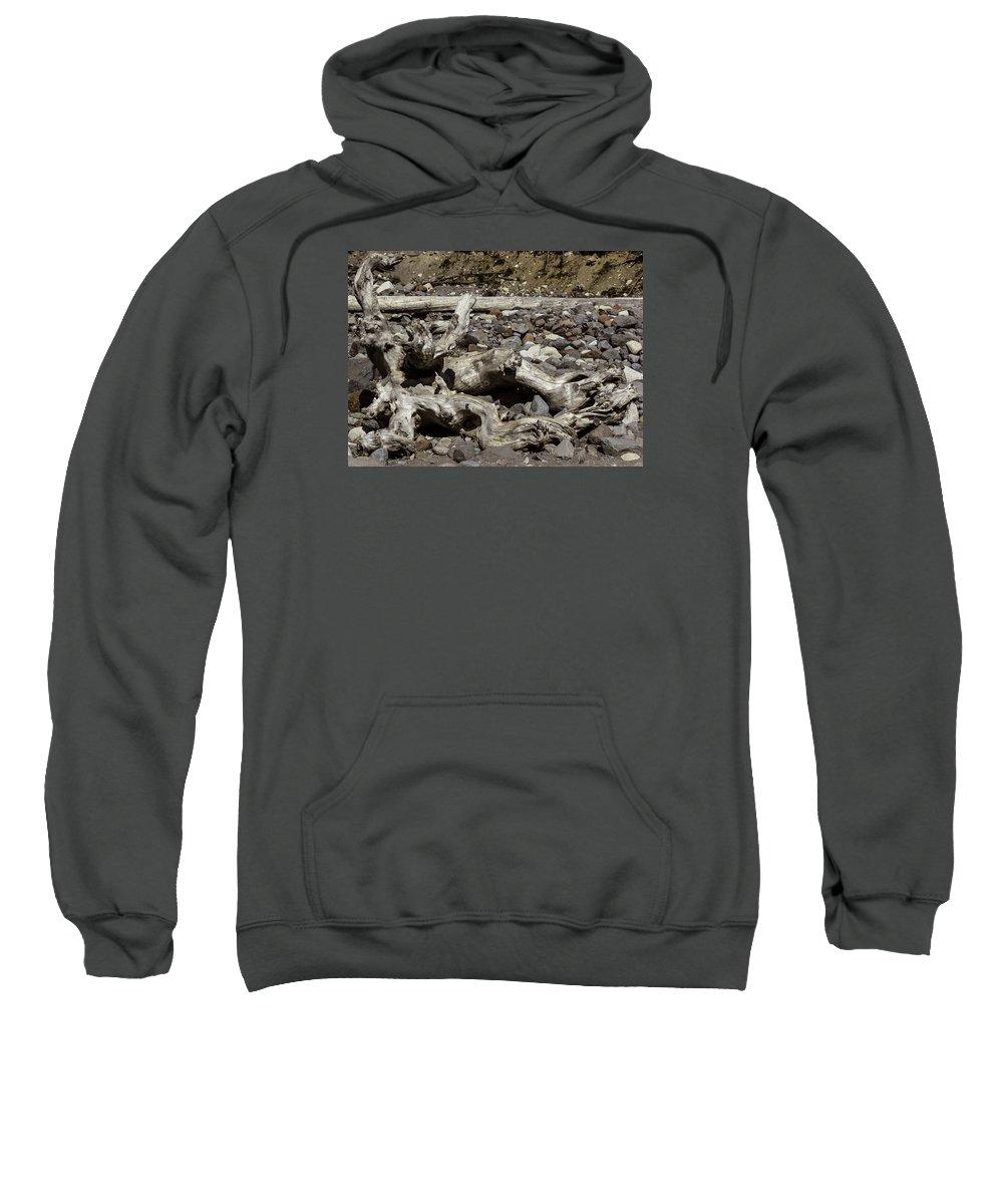 Driftwood Sweatshirt featuring the photograph Driftwood Mt. Rainier by Paul Shefferly