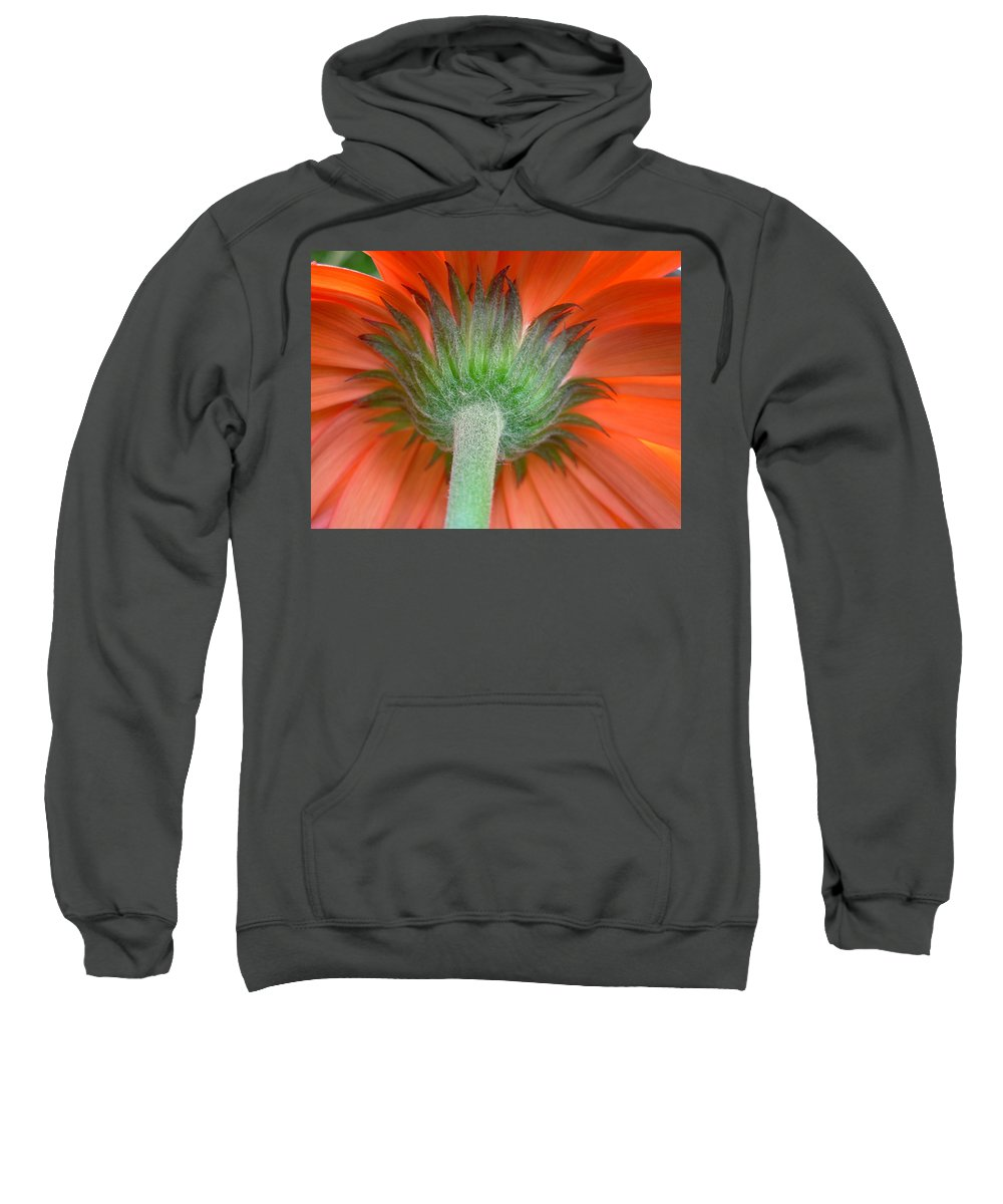 Flower Sweatshirt featuring the photograph Dscn4734 by Kimberlie Gerner