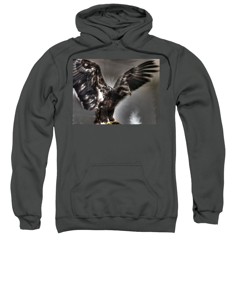 Eagle Sweatshirt featuring the photograph Eagle First Landing by John Straton