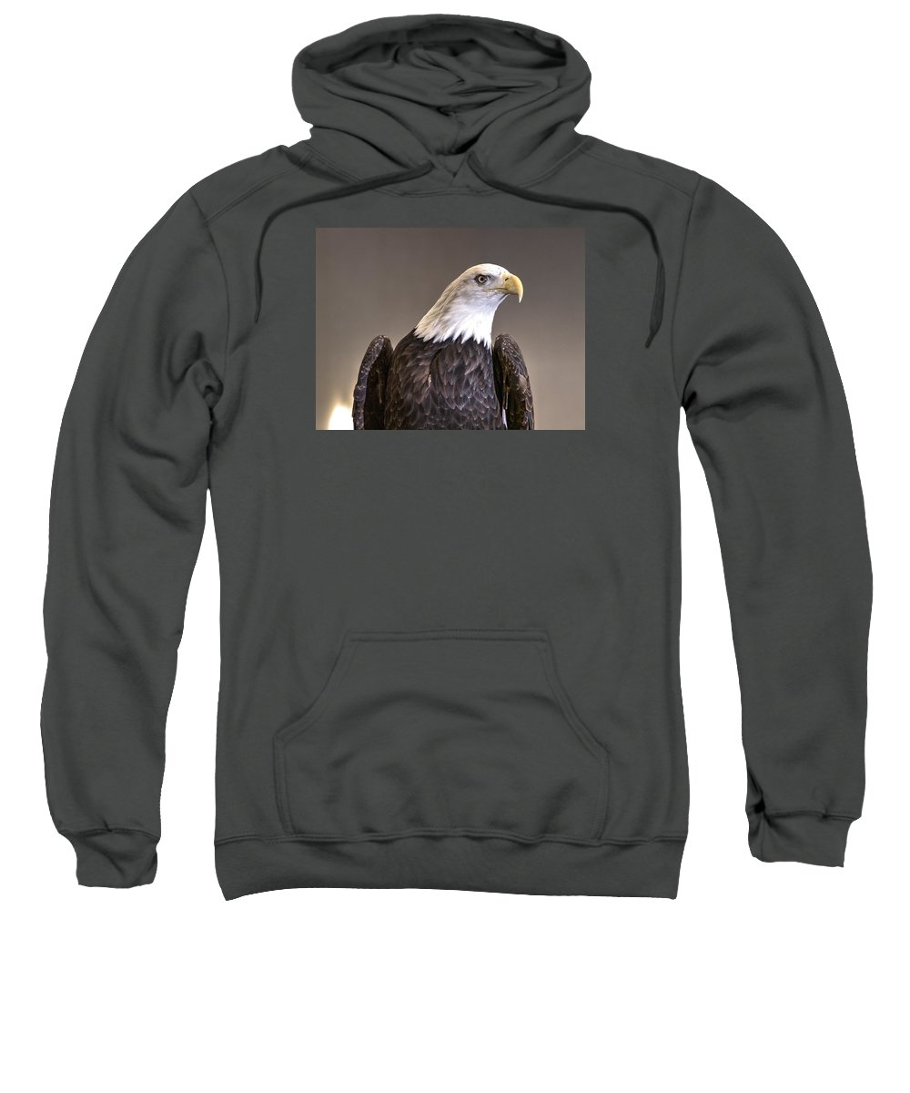 Eagle Sweatshirt featuring the photograph Eagle On Watch by John Straton