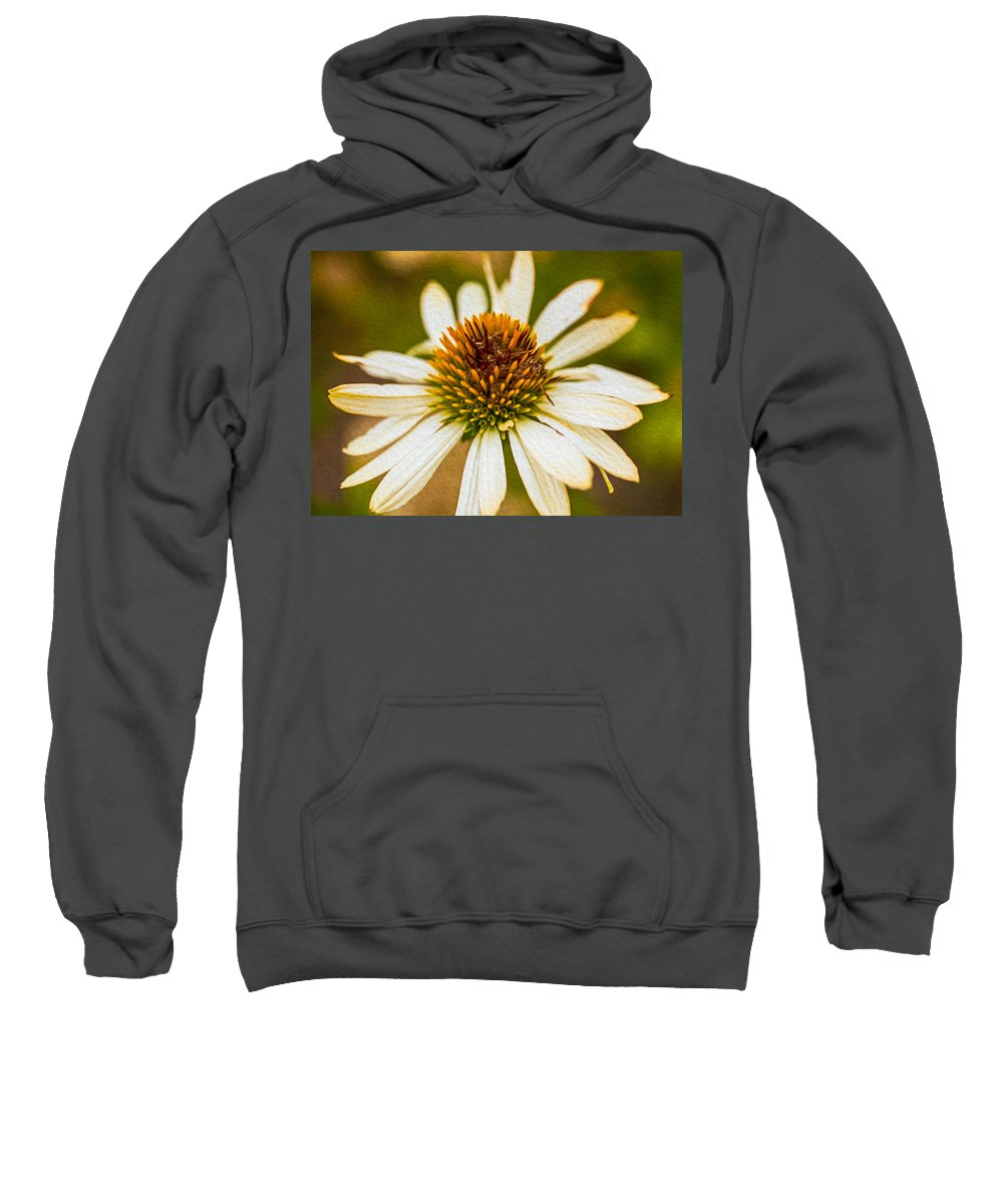 North Cascades Sweatshirt featuring the painting Echinacea Fading Beauty by Omaste Witkowski