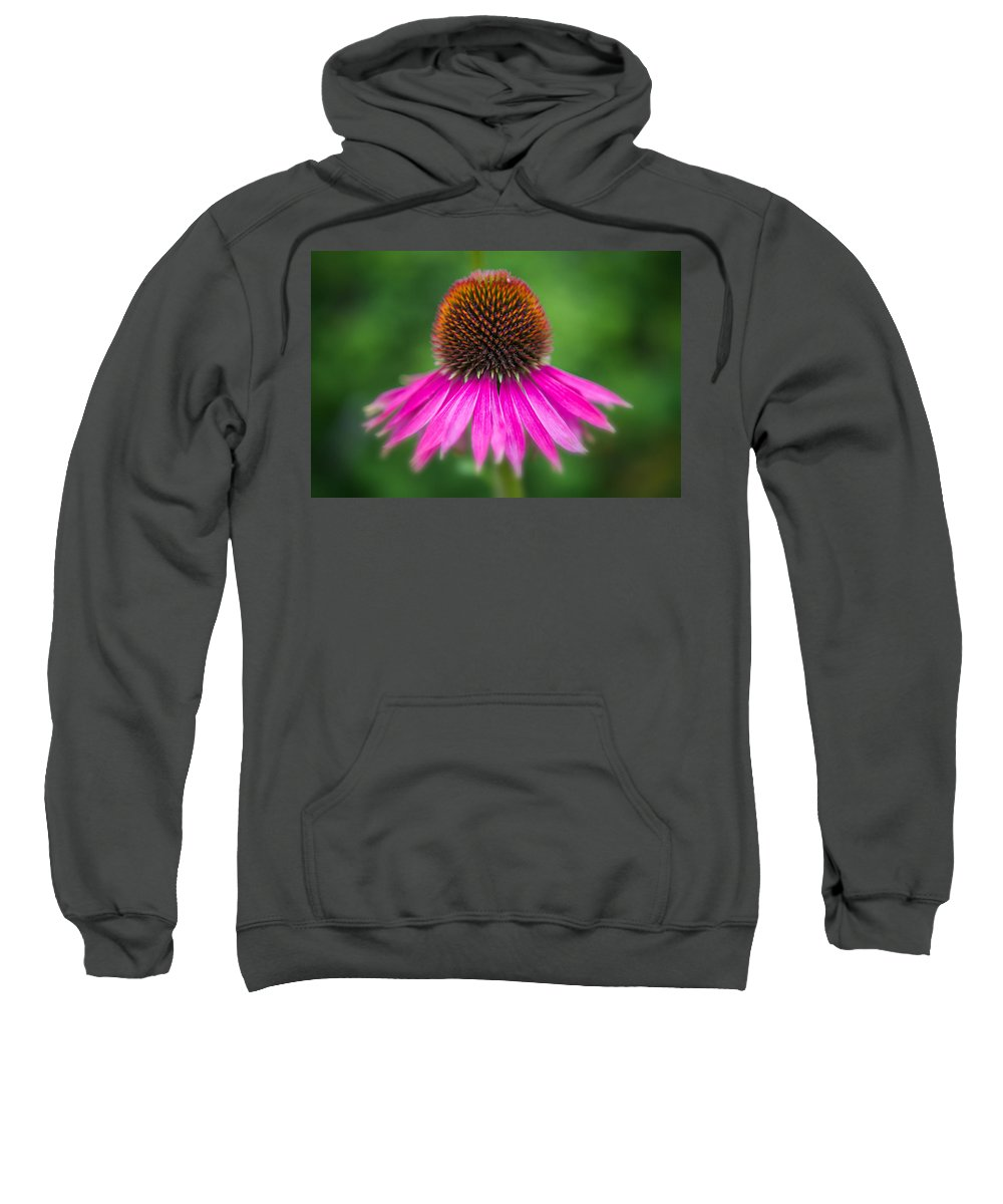 Coneflower Sweatshirt featuring the photograph Echinacea by Ludwig Riml