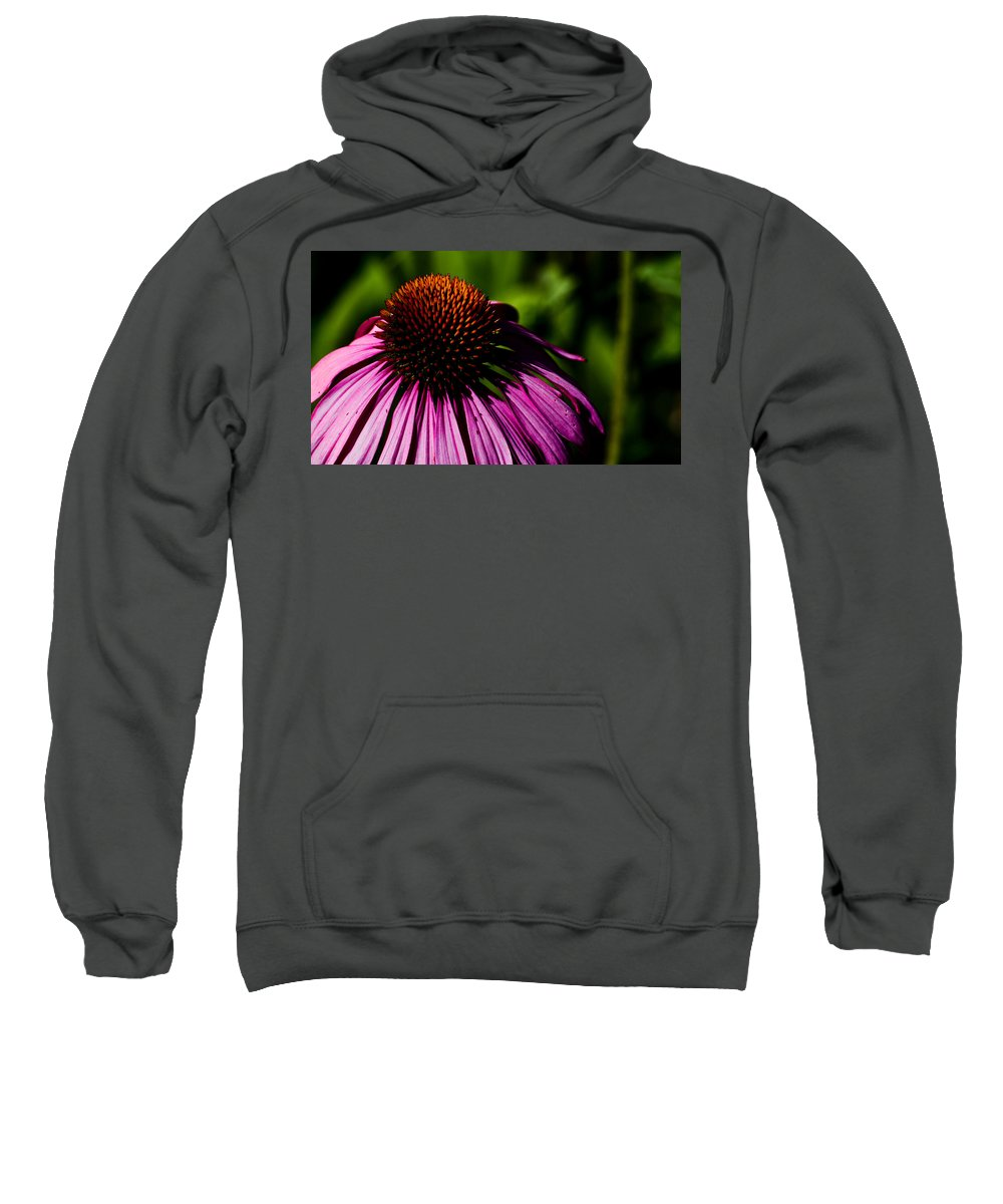 Echinacea Sweatshirt featuring the photograph Echinacea by Patrick Moore