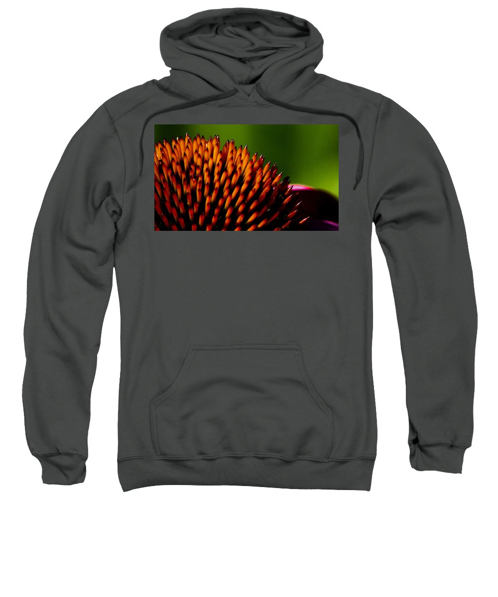 Echinacea Sweatshirt featuring the photograph Echinacea Up Close by Patrick Moore