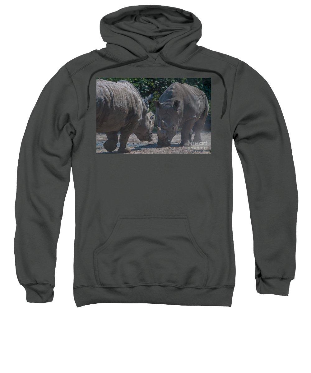 Rhino Sweatshirt featuring the photograph Establishing Dominance by Bianca Nadeau