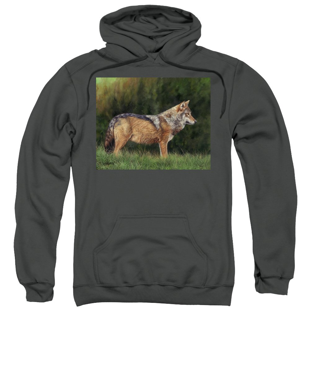 Wolf Sweatshirt featuring the painting European Grey Wolf by David Stribbling
