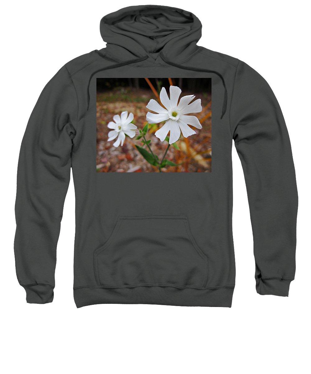 Evening Lychnis Sweatshirt featuring the photograph Evening Lychnis by MTBobbins Photography