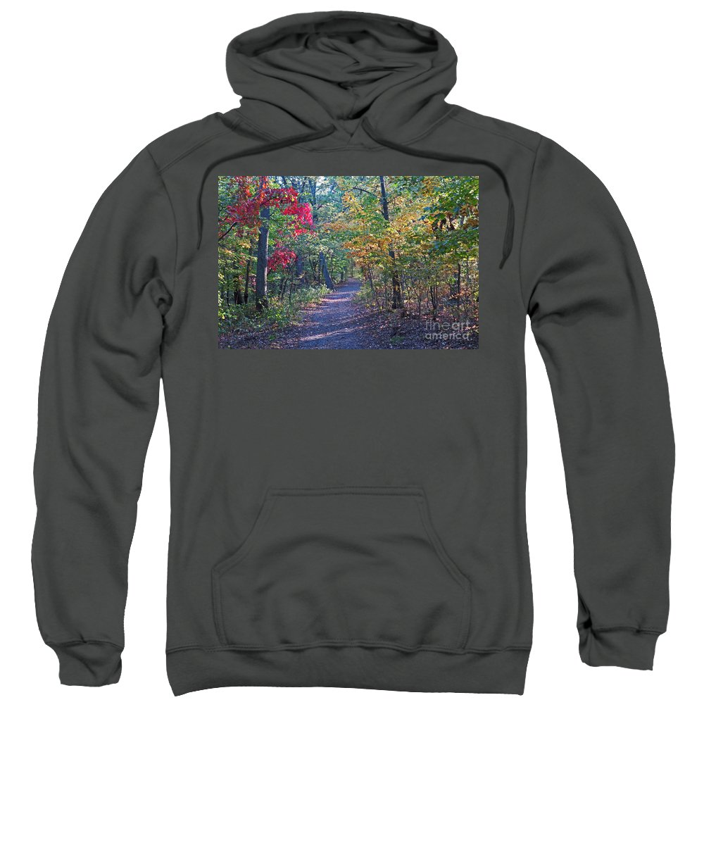 Nature Sweatshirt featuring the photograph Evening Walk Thru The Woods by Dawn Gari