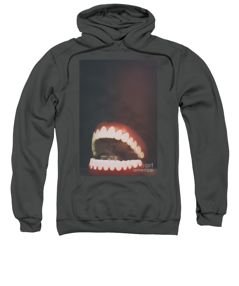 Fake Sweatshirt featuring the photograph Fake by Margie Hurwich