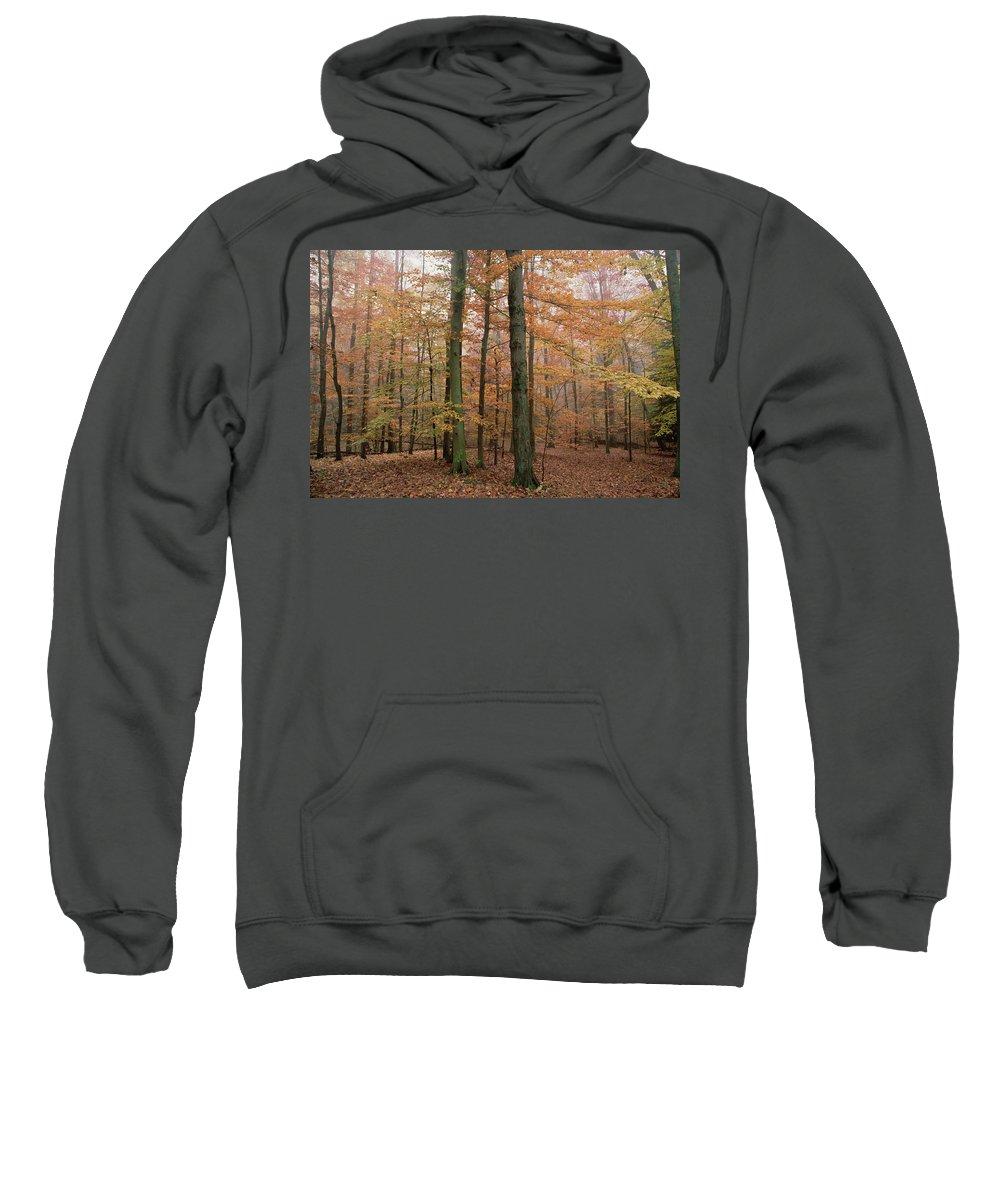 Autumn Sweatshirt featuring the photograph Fall Colors In Catoctin Mt. Park by Gerry Ellis