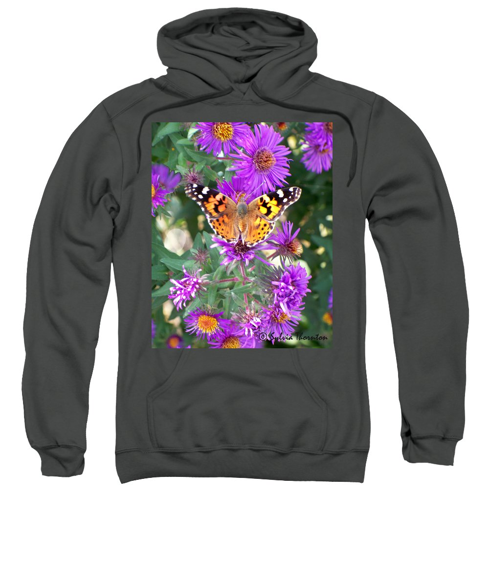 Butterfly Sweatshirt featuring the photograph Fall Flutterby by Sylvia Thornton