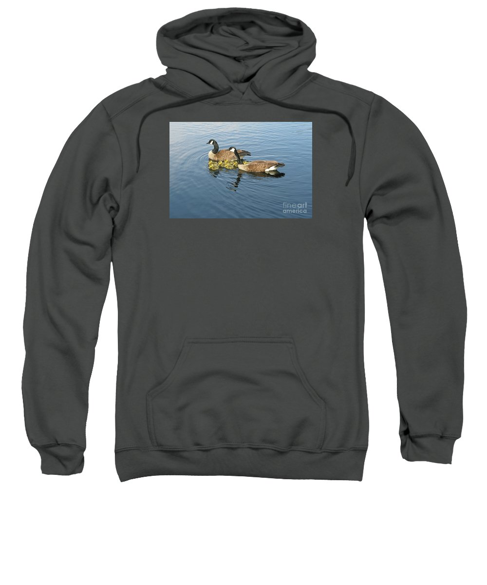 Geese Sweatshirt featuring the photograph Family Outing by Ann Horn