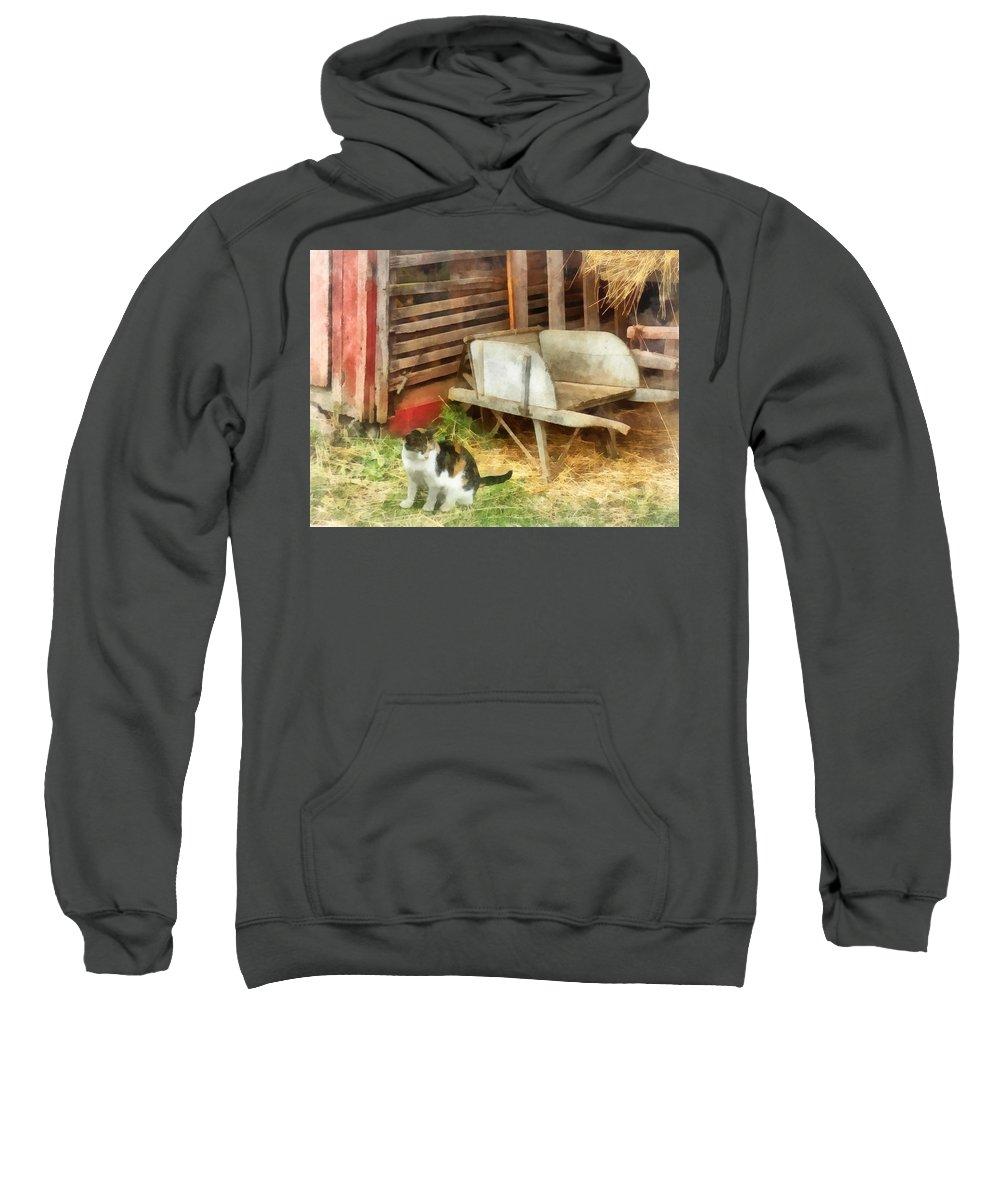 Cat Sweatshirt featuring the photograph Farm Cat by Susan Savad