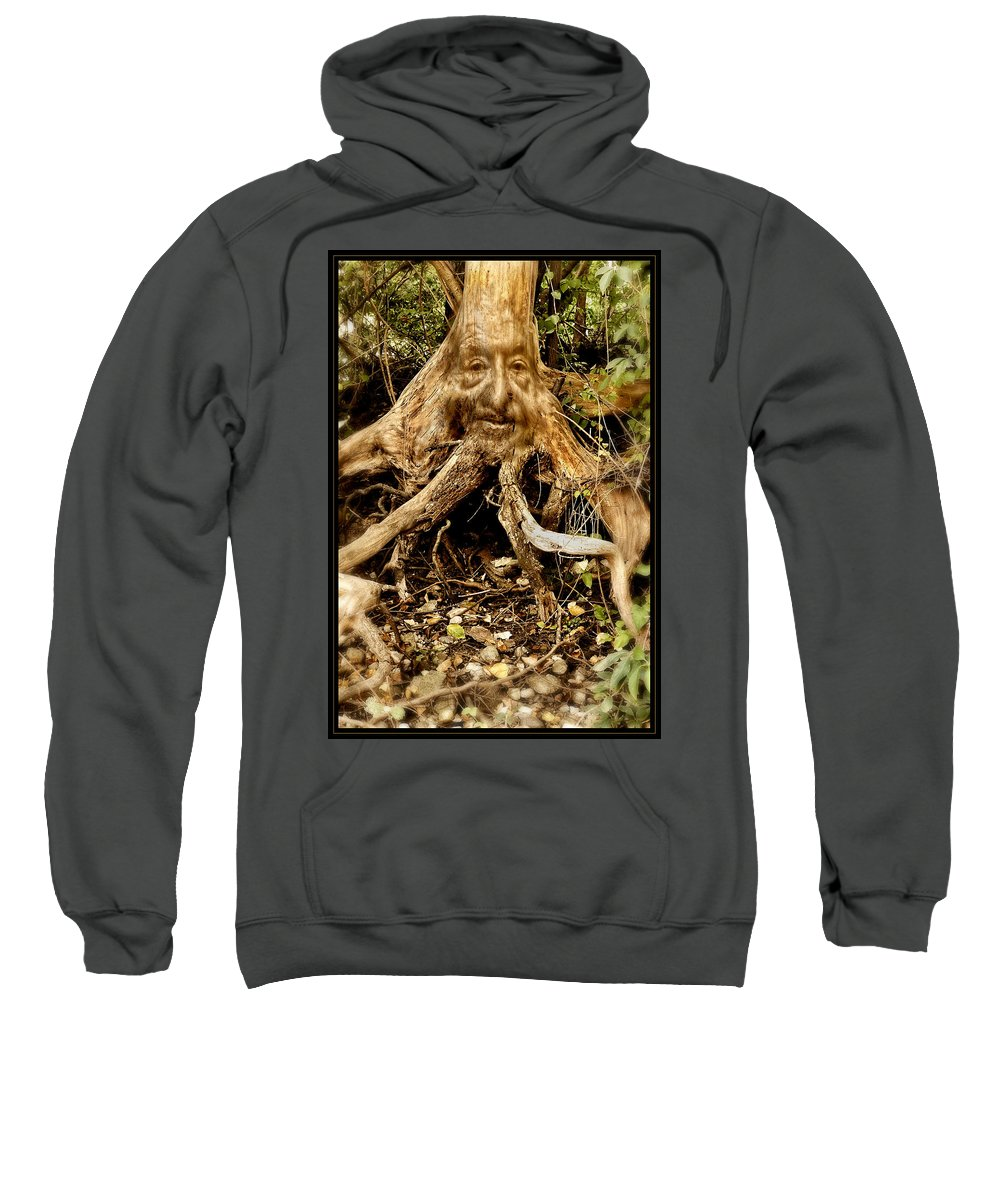 Tree Sweatshirt featuring the photograph Father Nature by Gene Tatroe