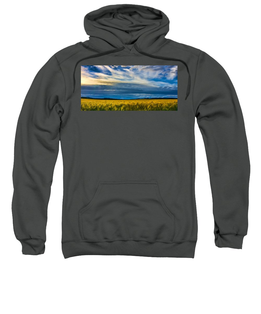 Skies Sweatshirt featuring the photograph Field Of Gold by Don Schwartz