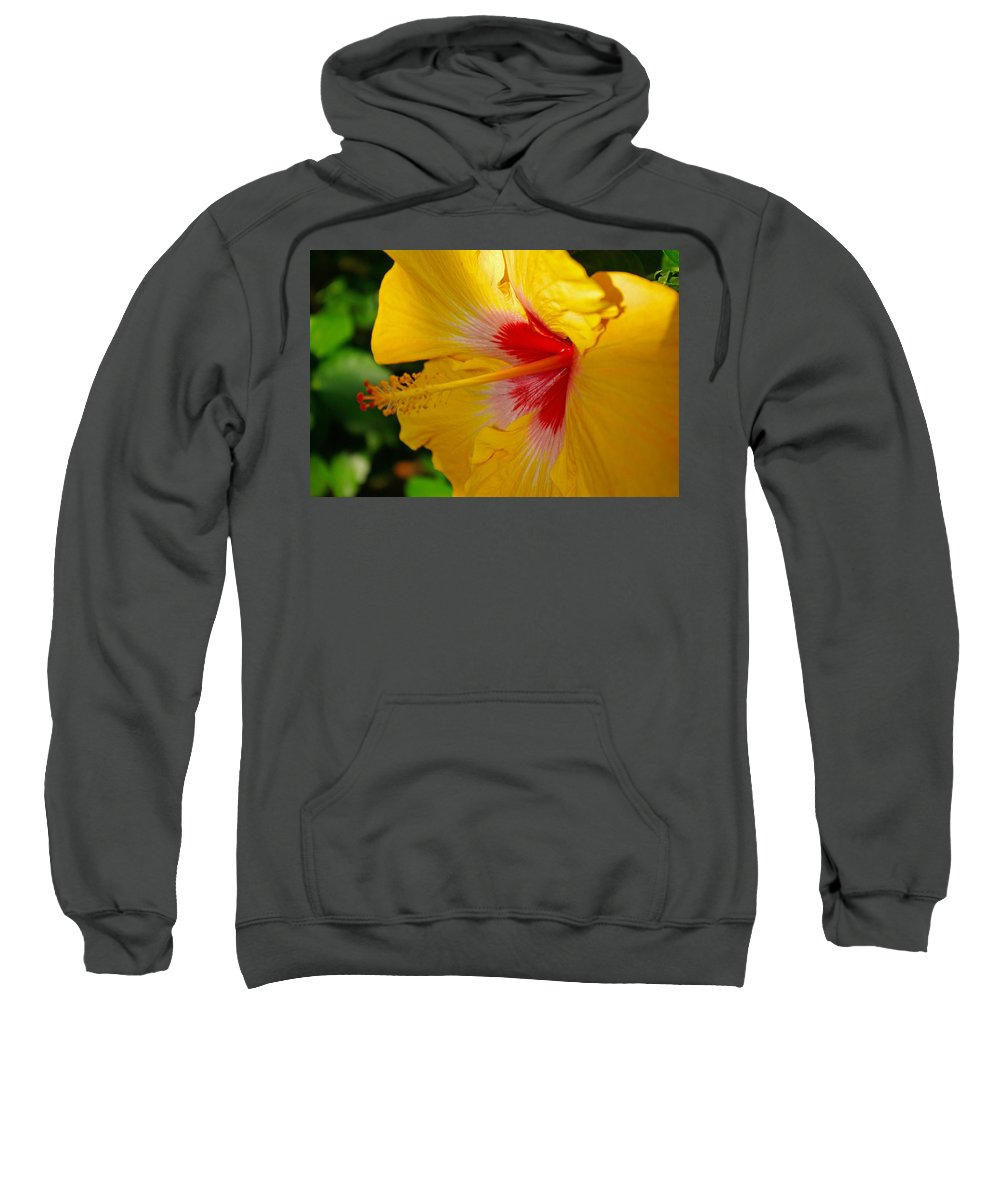Hibiscus Sweatshirt featuring the photograph 'fifth Dimension' Hibiscus by Rich Walter