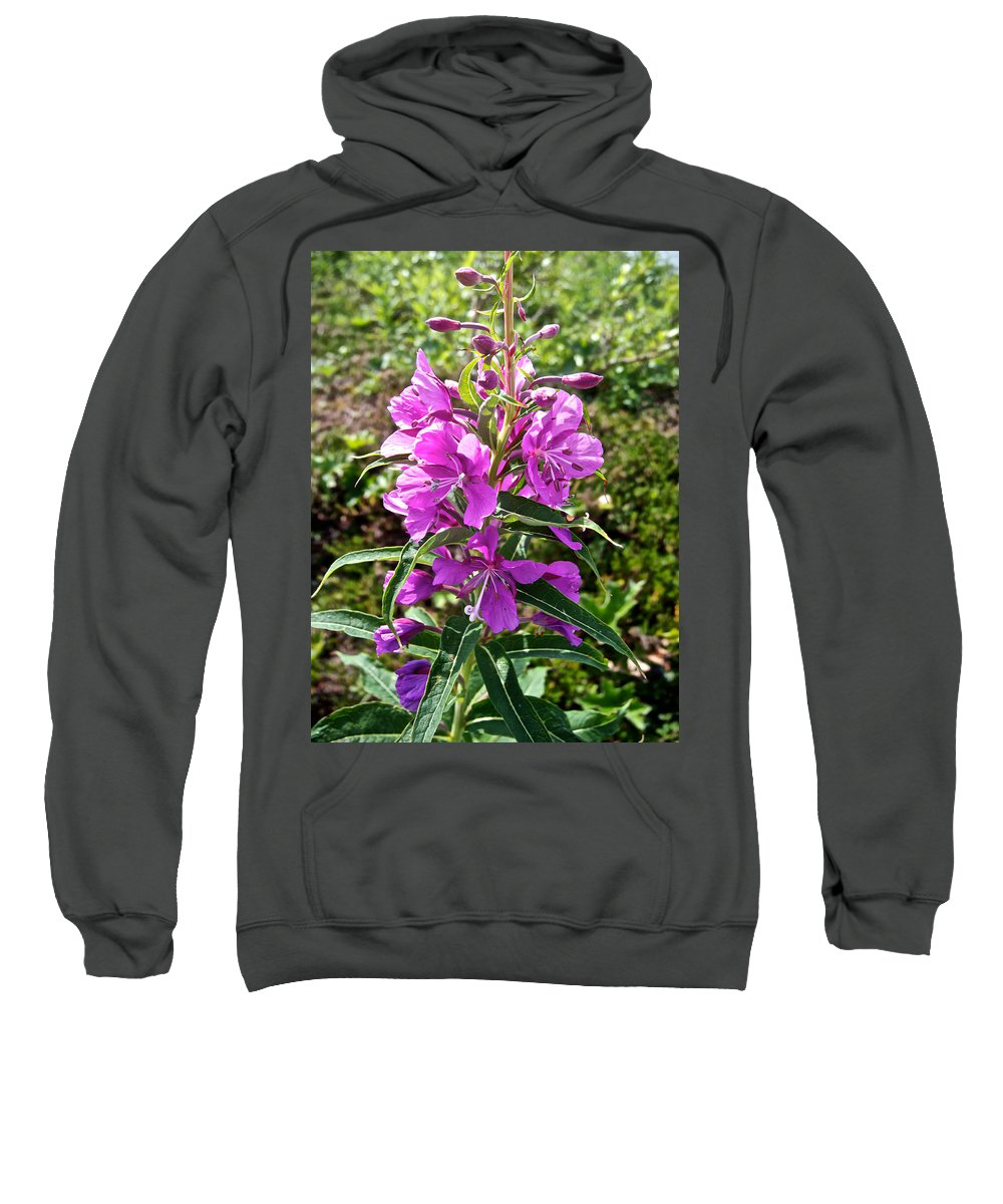 Fireweed Sweatshirt featuring the photograph Fireweed In Katmai National Preserve-ak- by Ruth Hager