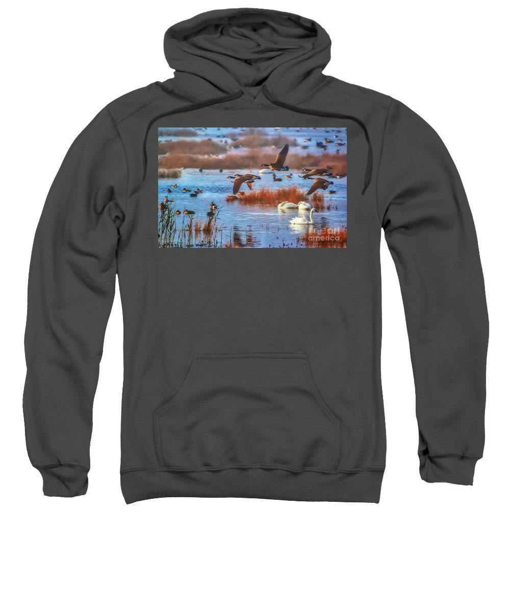 Lake Sweatshirt featuring the photograph Five Canadians by Scott Hervieux