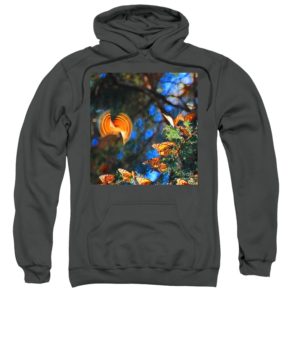 Butterflies Sweatshirt featuring the photograph Flight Of A Monarch by Kris Hiemstra