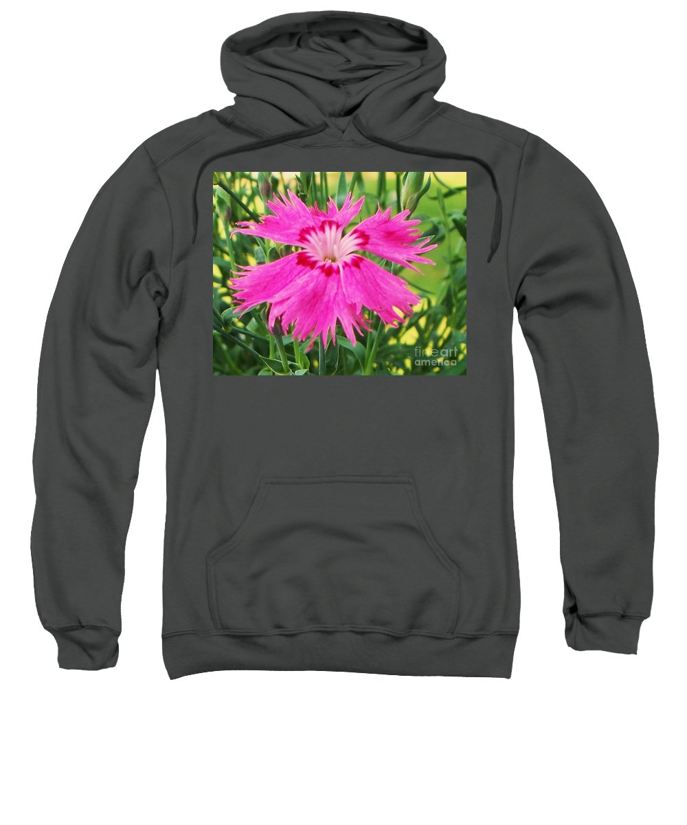 Flower Sweatshirt featuring the photograph Flower Pink by Eric Schiabor