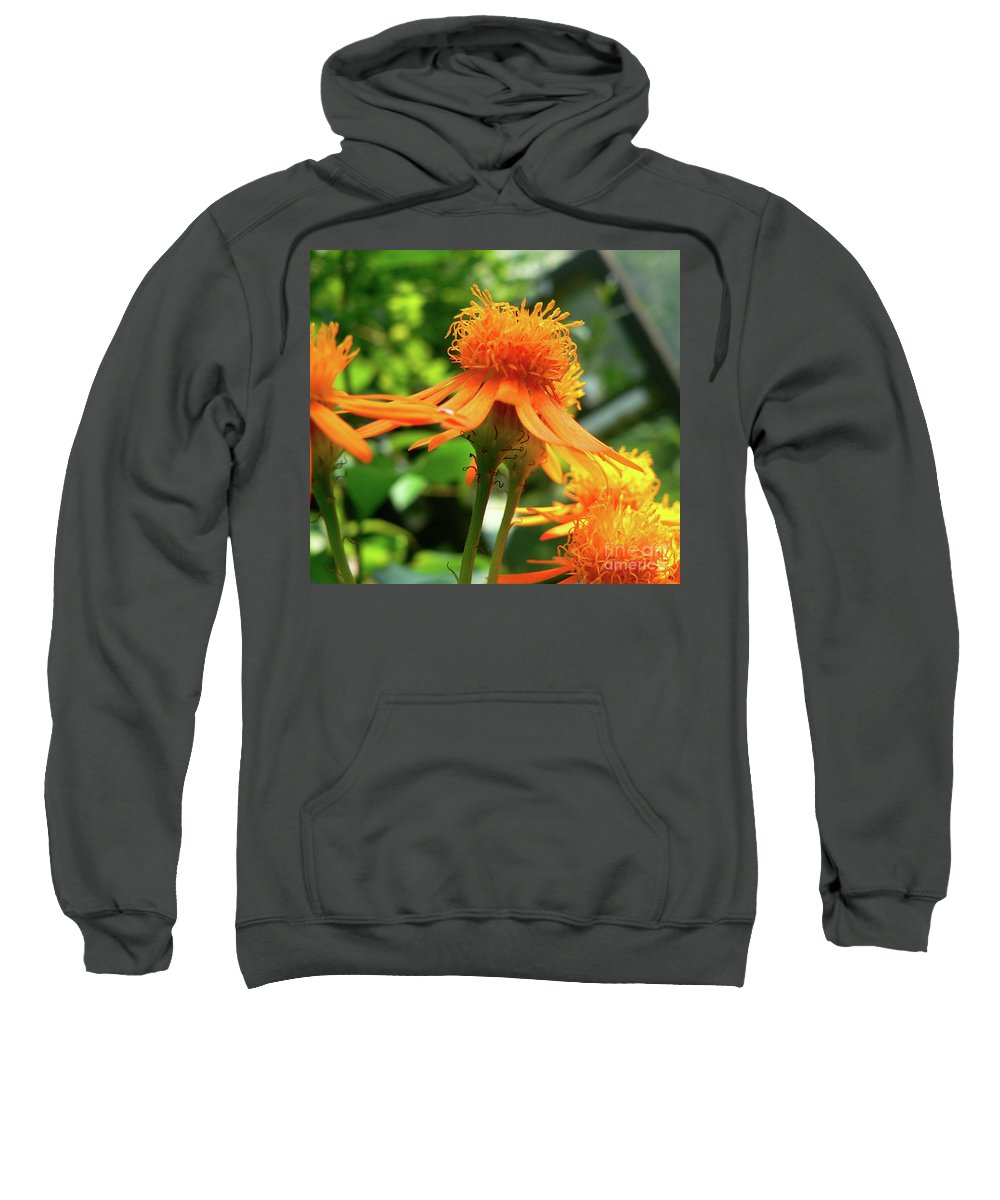 Flower Sweatshirt featuring the photograph Flower Top by Angela Wright