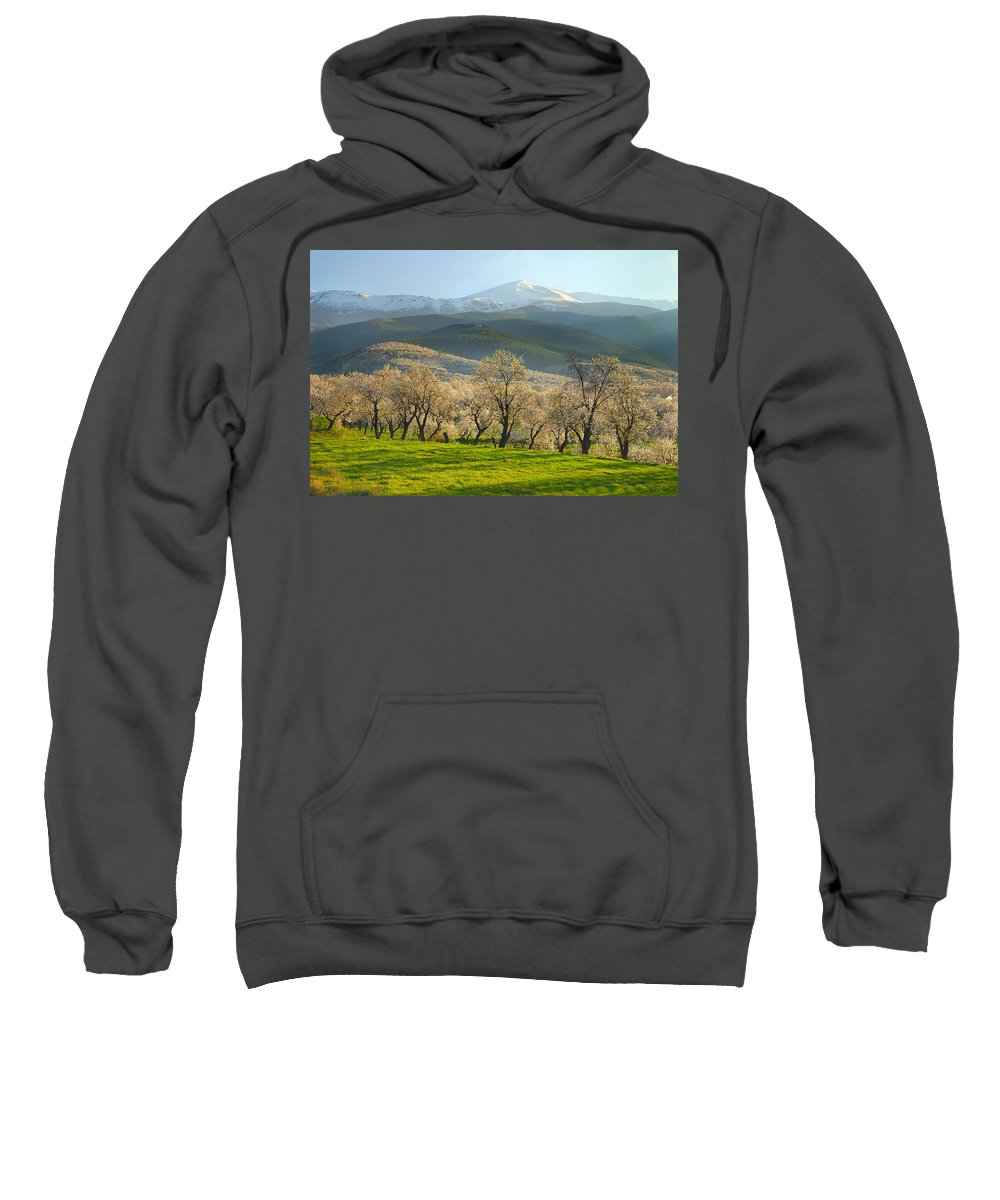 Almond Sweatshirt featuring the photograph Flowering Almond At The Mountains by Guido Montanes Castillo