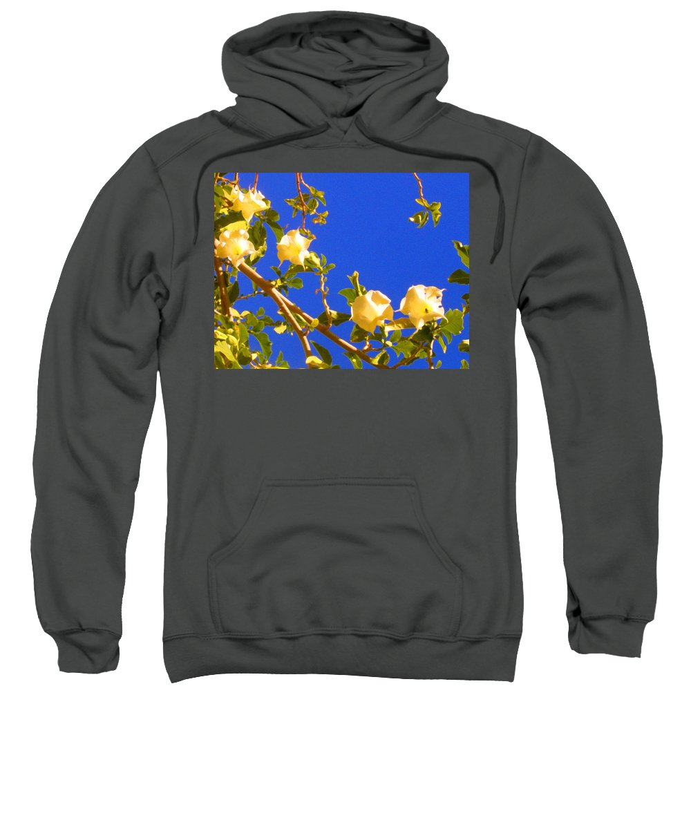 Landscapes Sweatshirt featuring the painting Flowering Tree 1 by Amy Vangsgard
