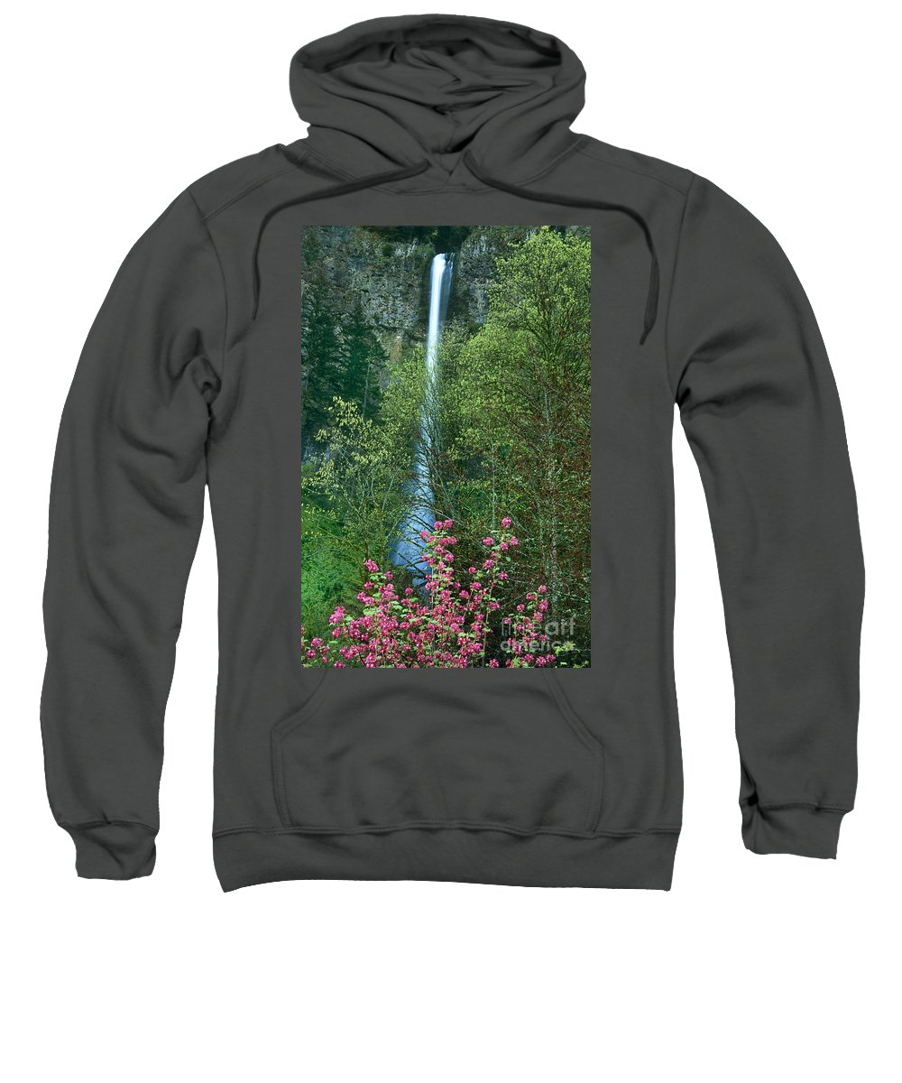 North America Sweatshirt featuring the photograph Flowering Tree Below Multnomah Falls Columbia River Gorge Nsa Oregon by Dave Welling