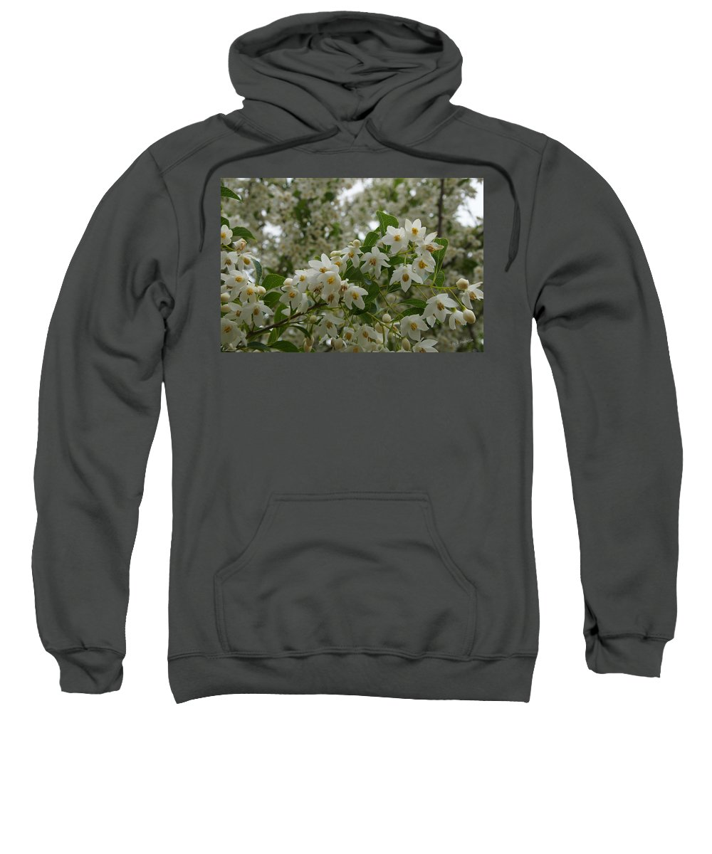 Flowering Sweatshirt featuring the photograph Flowering Tree by Mick Anderson