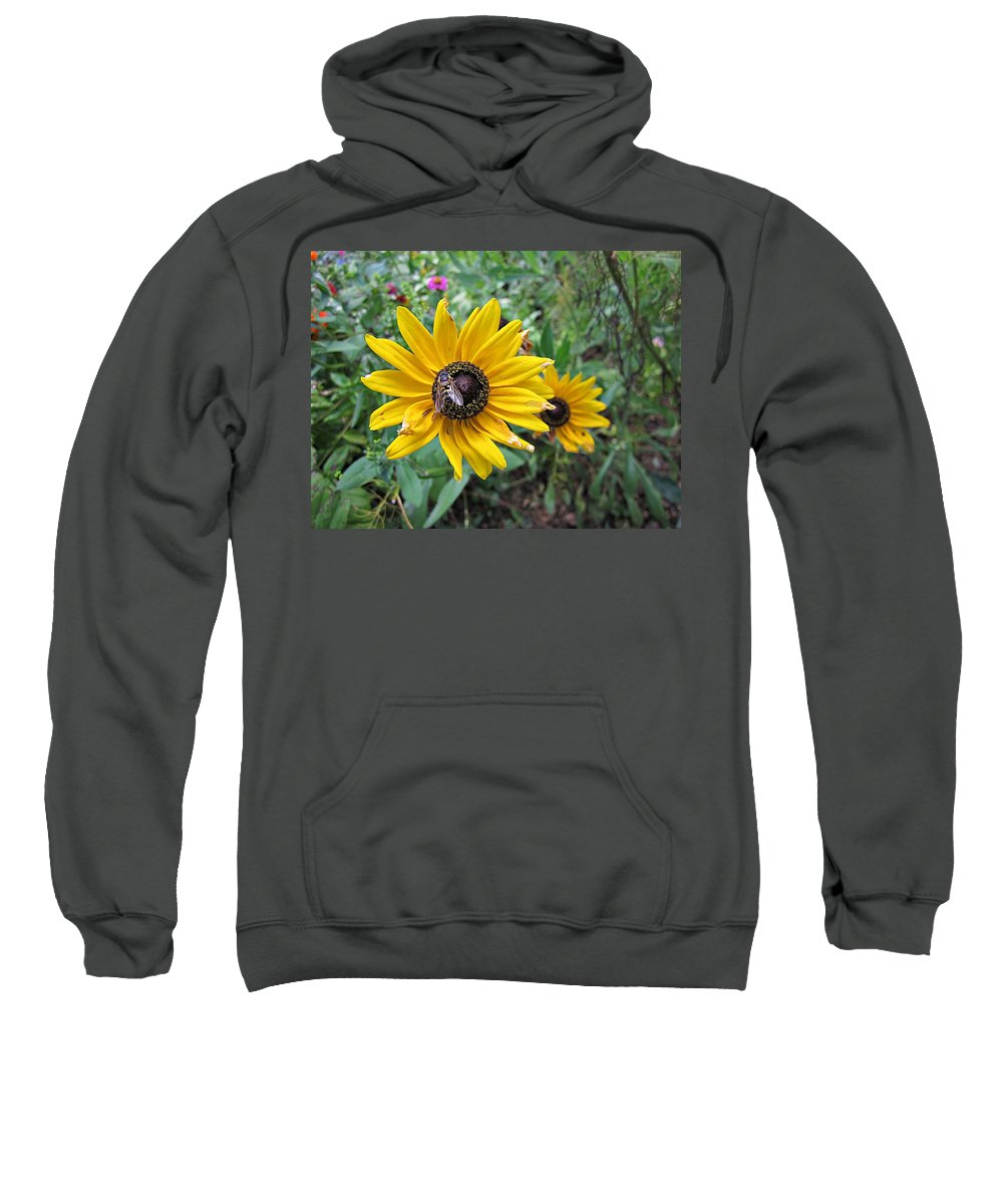 Fly Sweatshirt featuring the photograph Fly On Rudbeckia by MTBobbins Photography